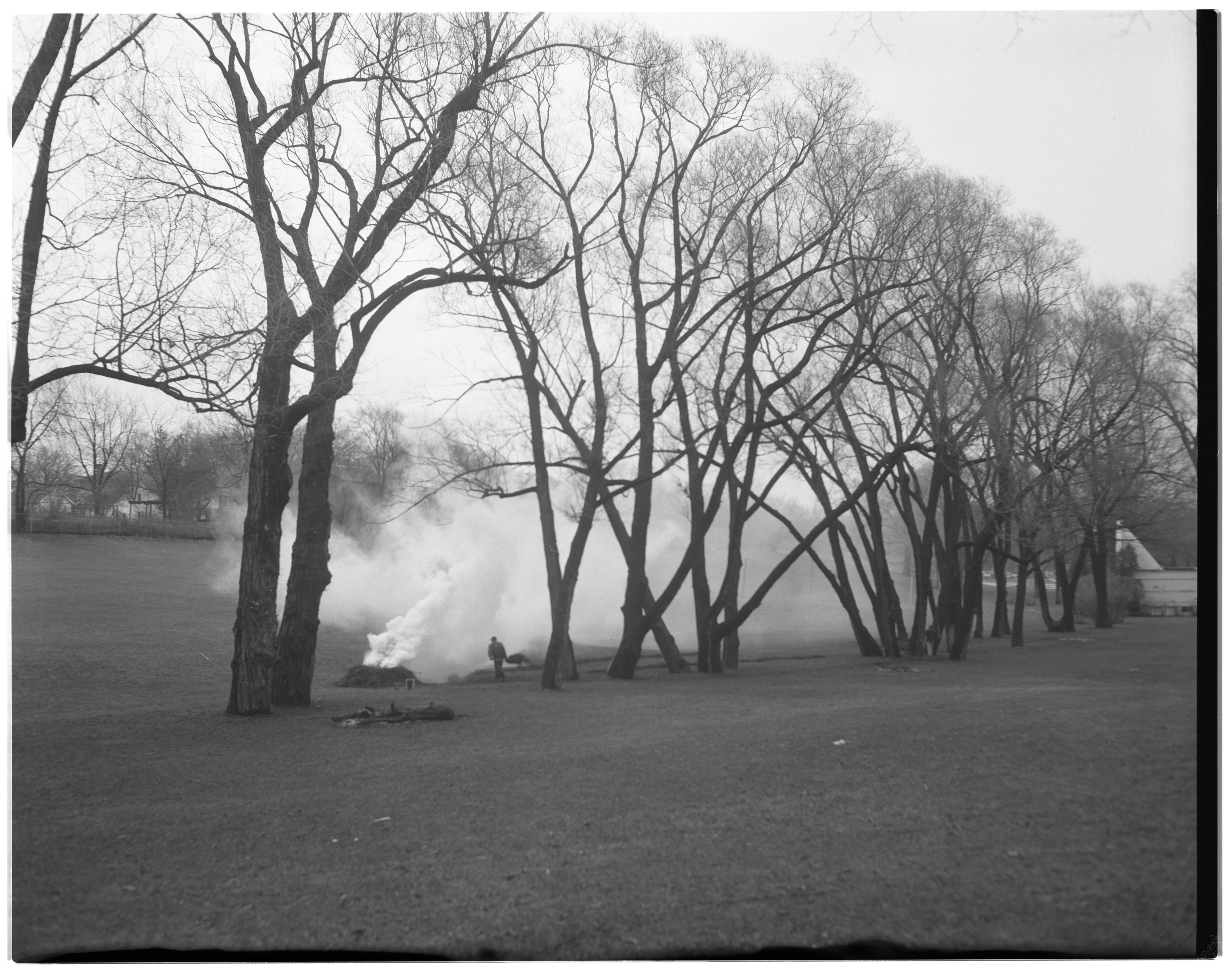 Spring Cleaning, West Park image