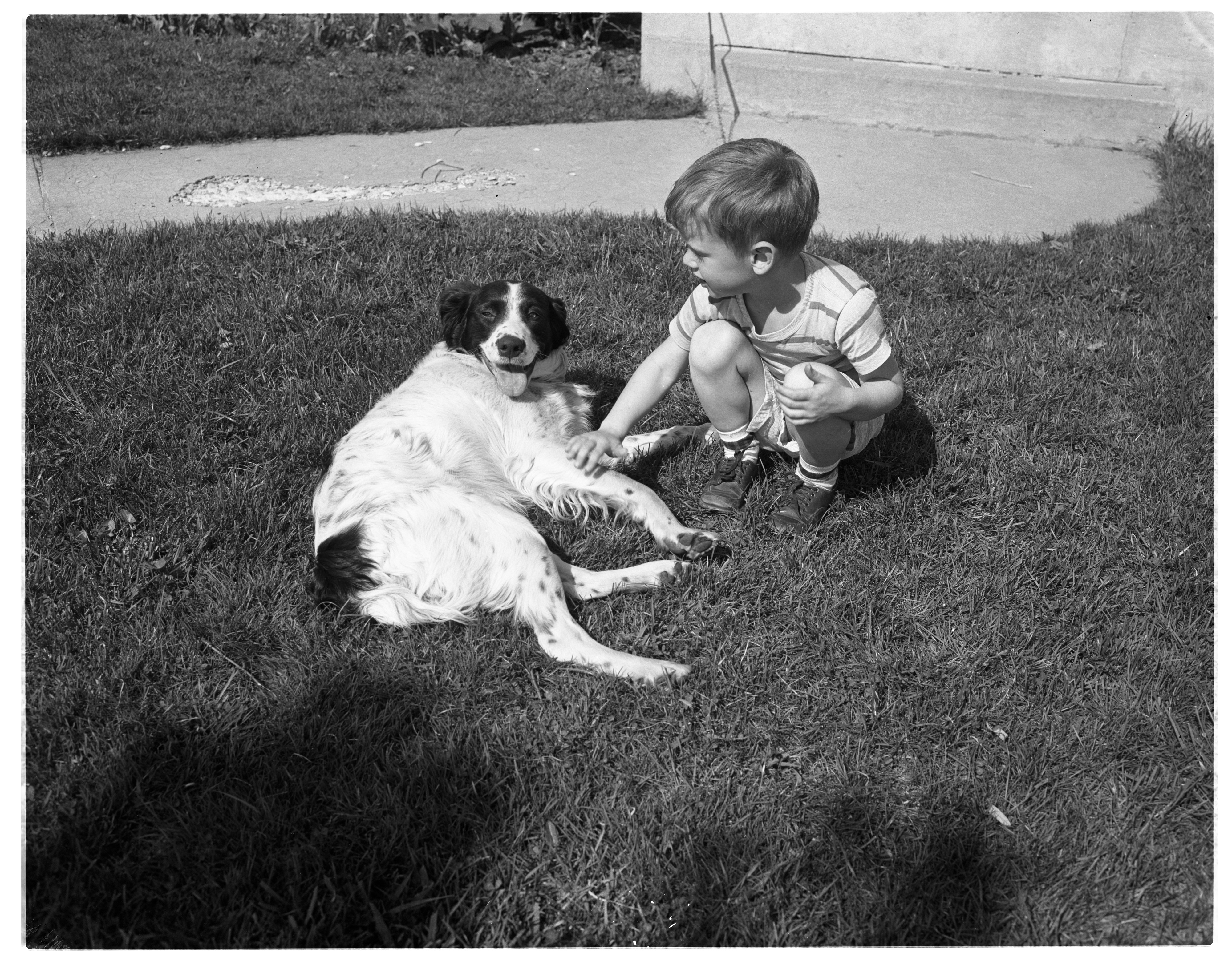 Image from Concerned Dog Owner Five-Year-Old David Johnson Writes Letter To Ann Arbor Police Department, May 1959