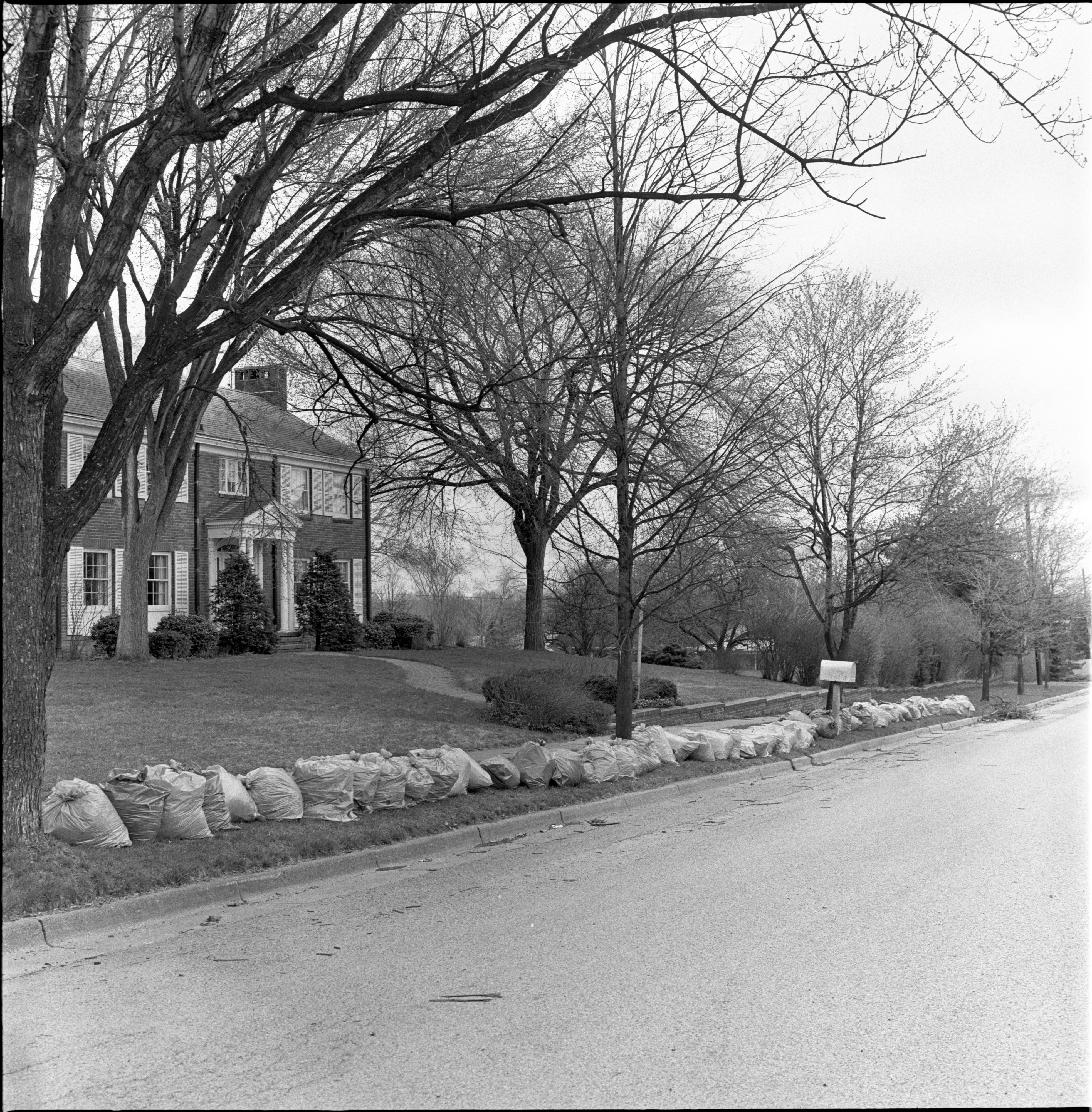 Spring Cleanup Yields 78 Bags Of Yard Refuse In Front Of 2101 Belmont Road, April 1972 image