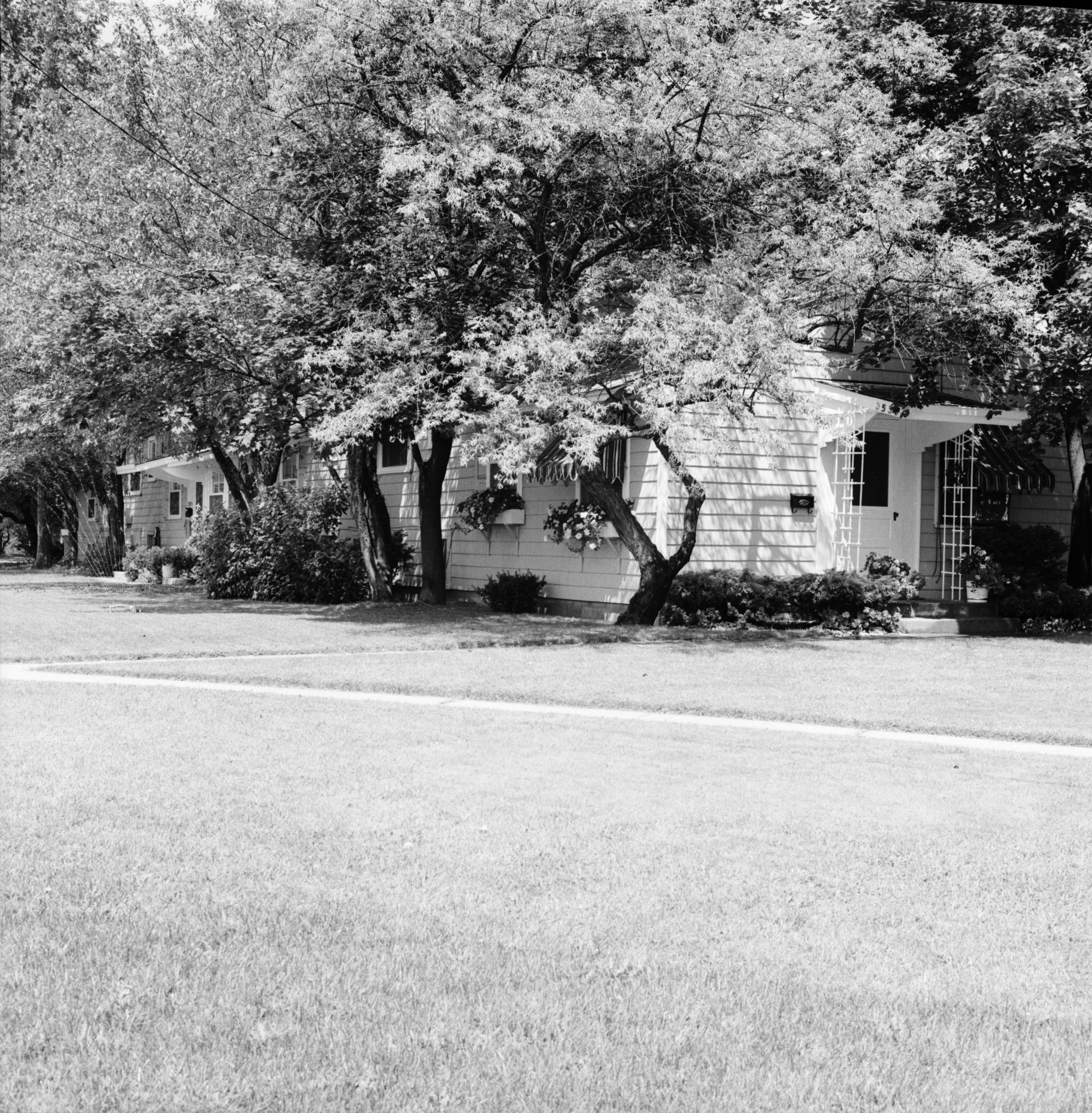 View of Home in Pittsfield Village, August 1973 image