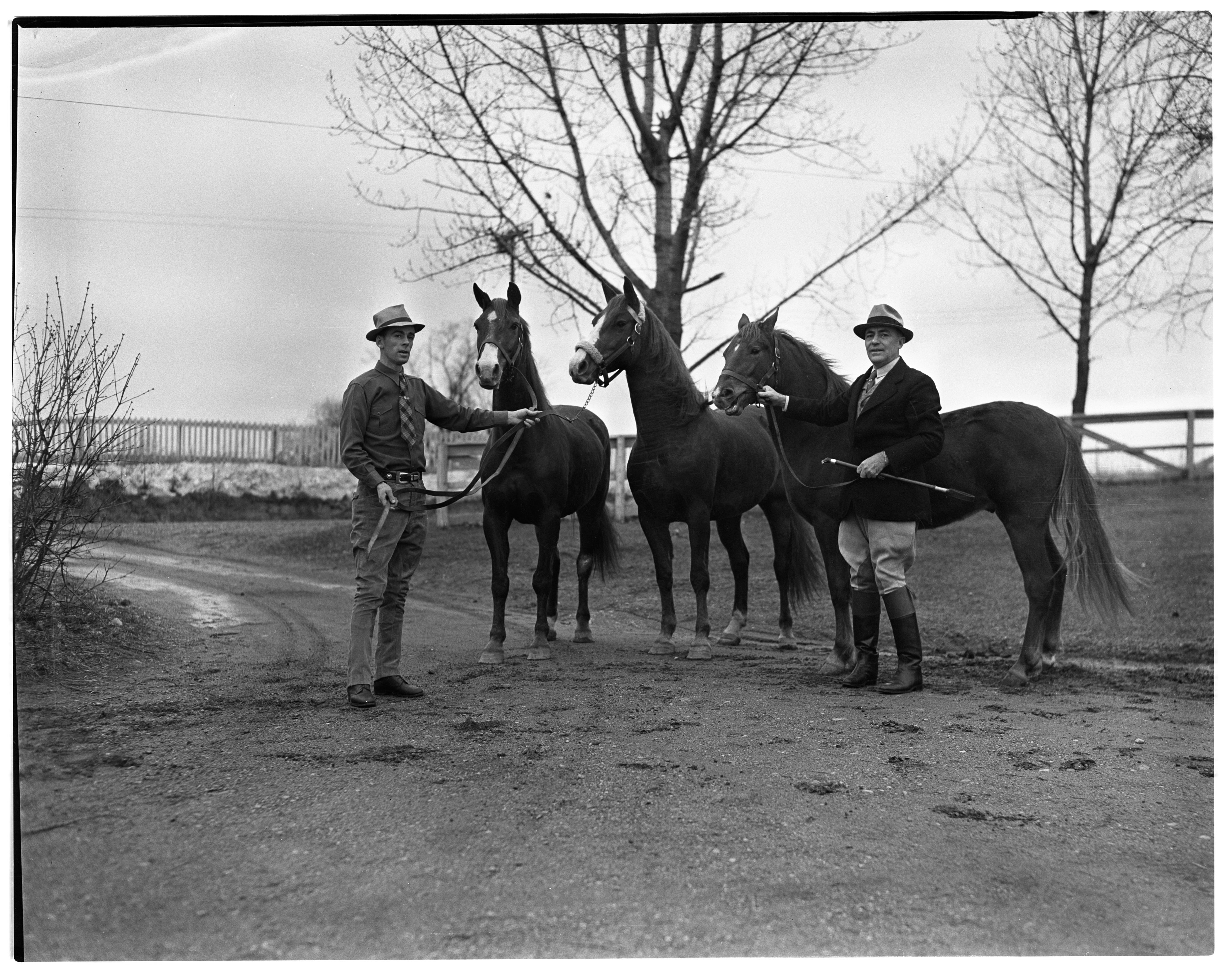 University of Michigan President Alexander G. Ruthven and Trainer Dolan with Morgan Horses, 1939 image