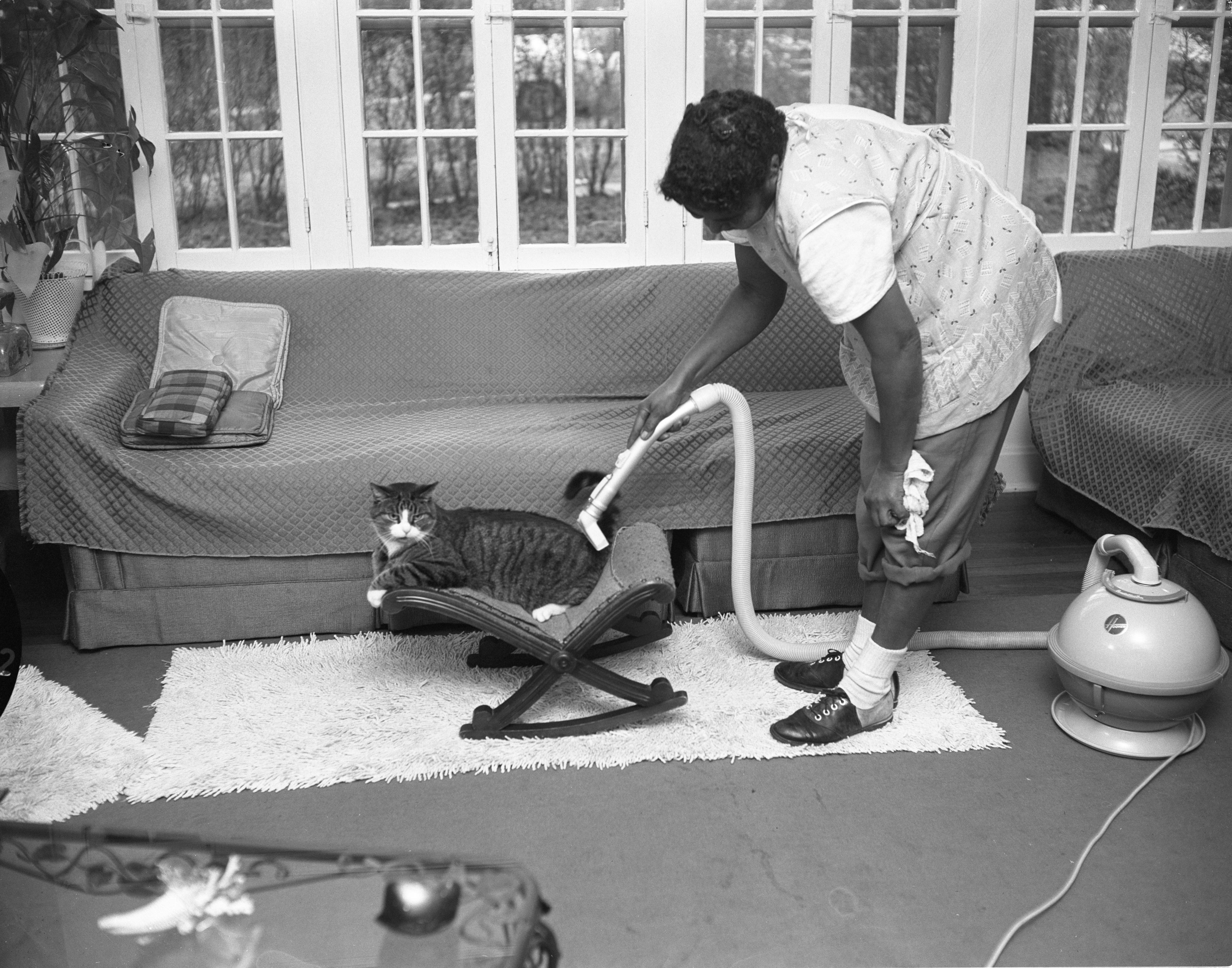 Mr. Buzzy Cleaned With Vacuum Cleaner, November 1958 image