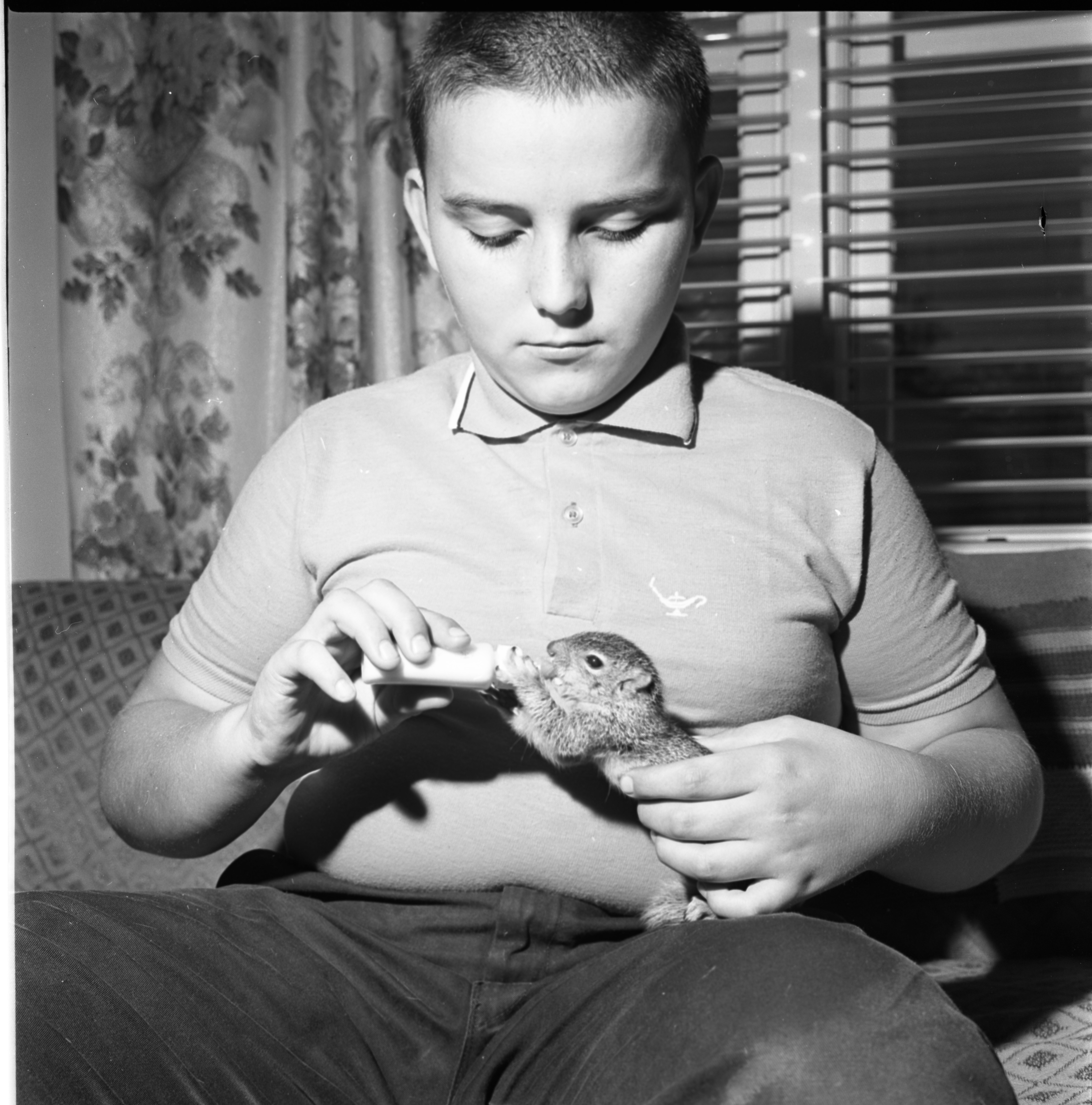 Kenneth Hoyt With Baby Squirrel, September 1964 image