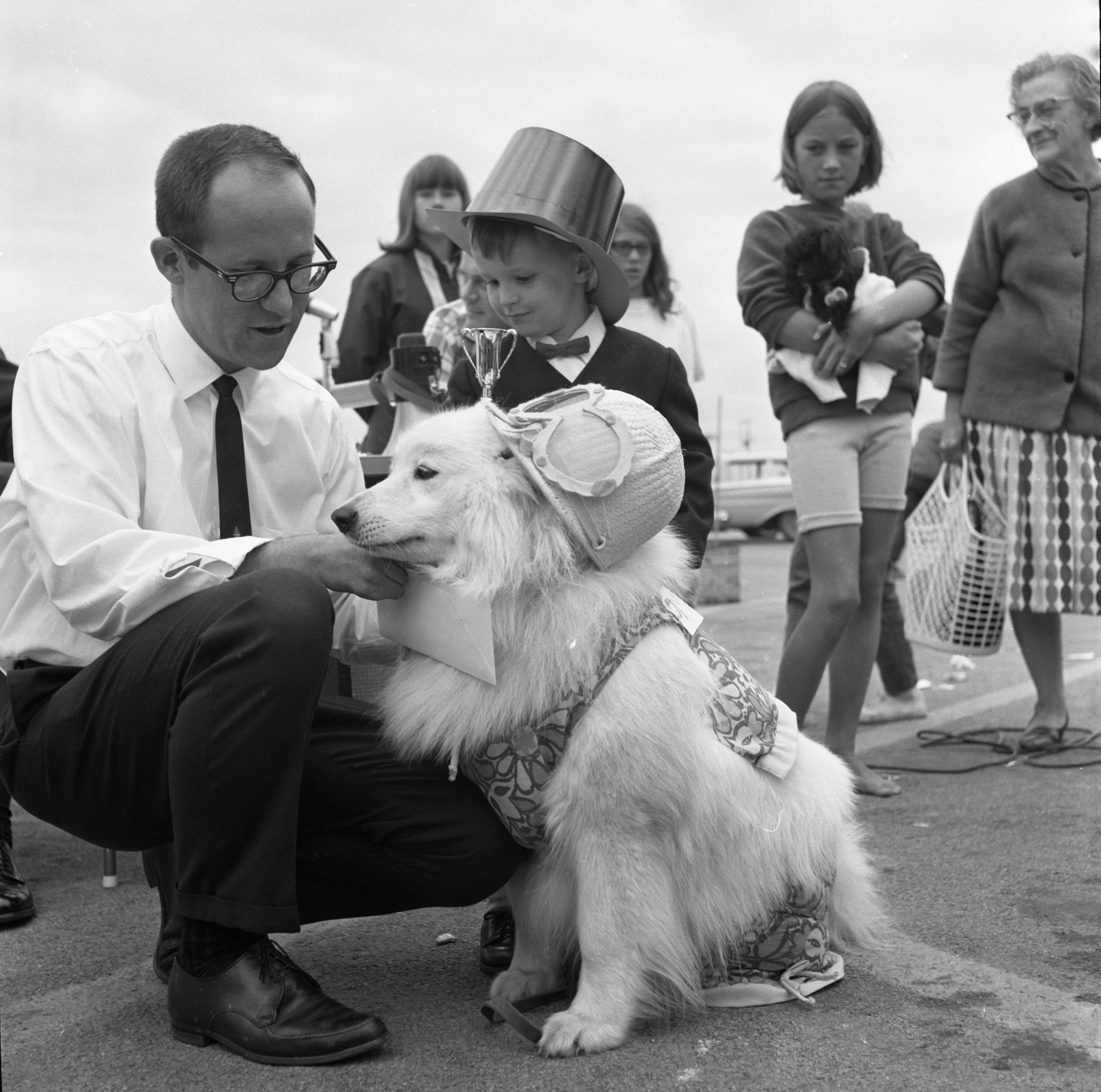Kevin P. McCollough & His Dog, Showball, Winners At Westgate Shopping Center's Pet Circus, July 17, 1967 image