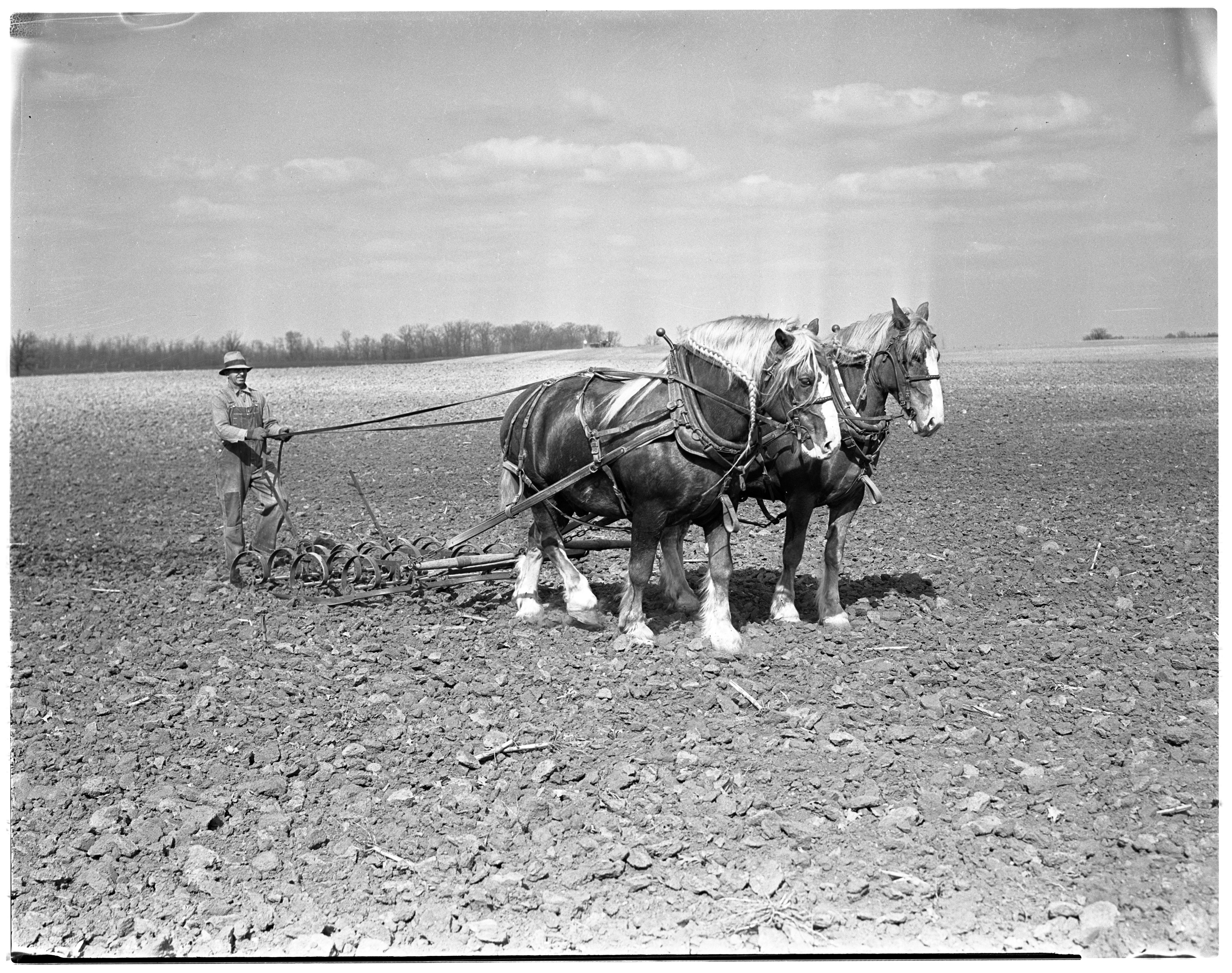 Working the Fields image