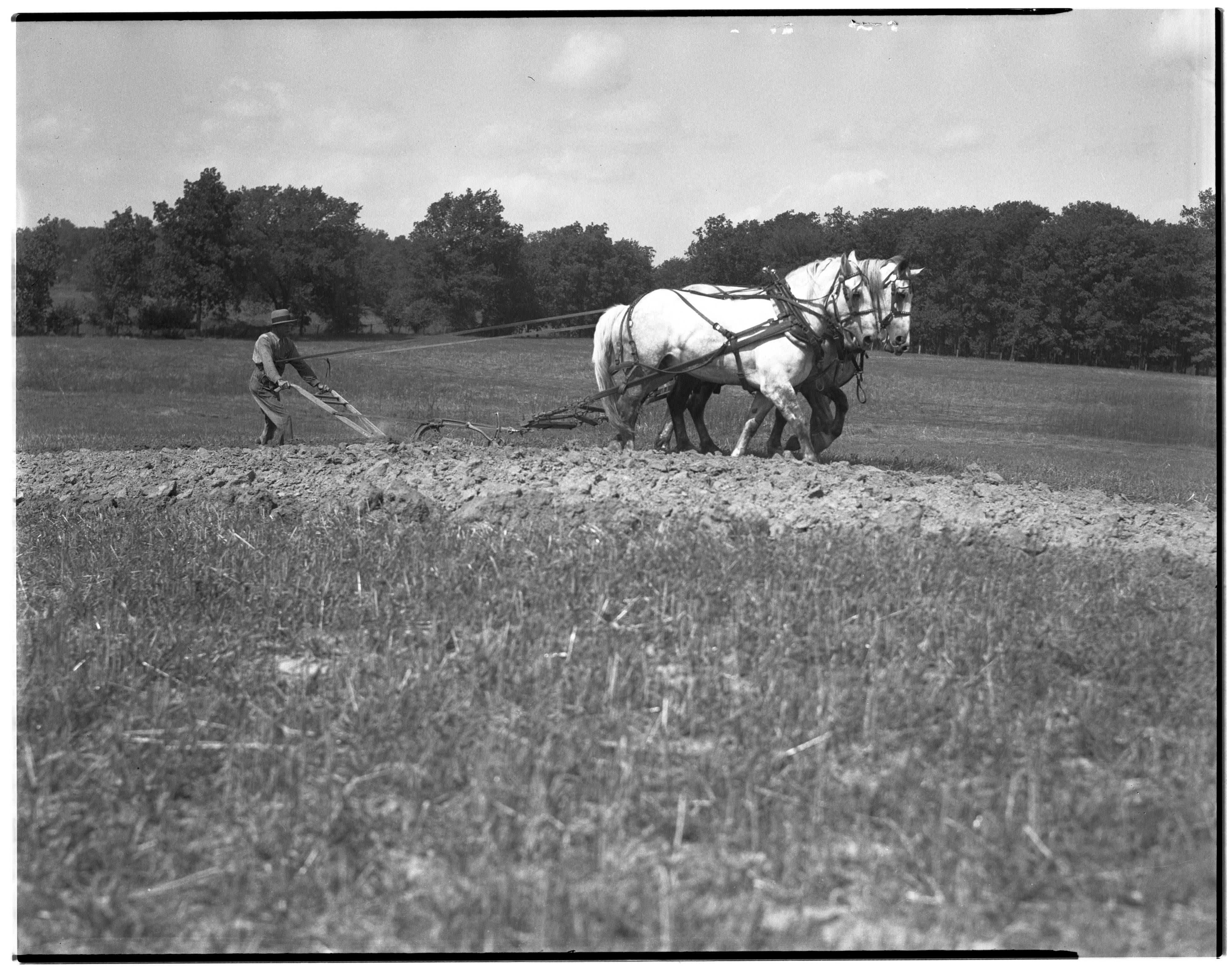 Plowing a Field image