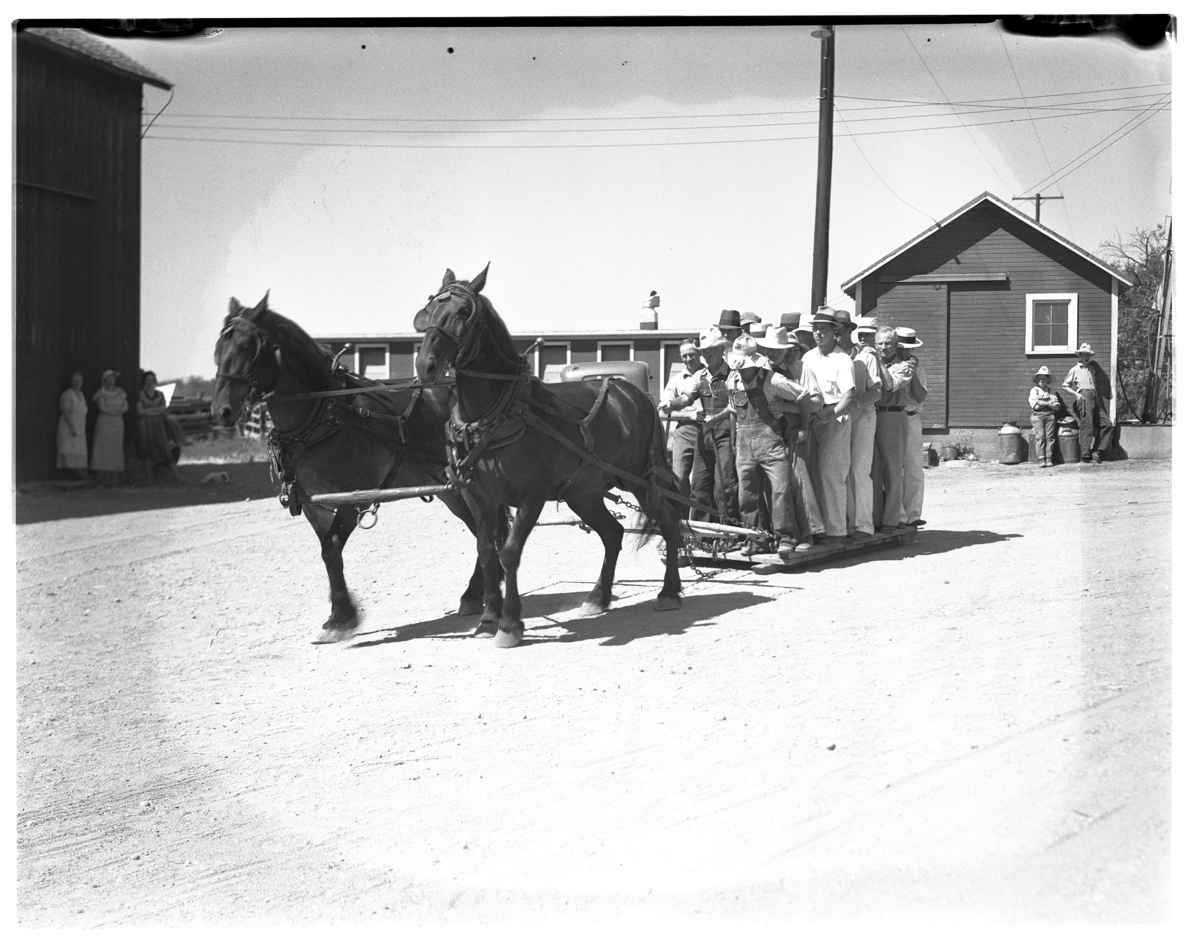 Horse Pulling at McCalla Farm image