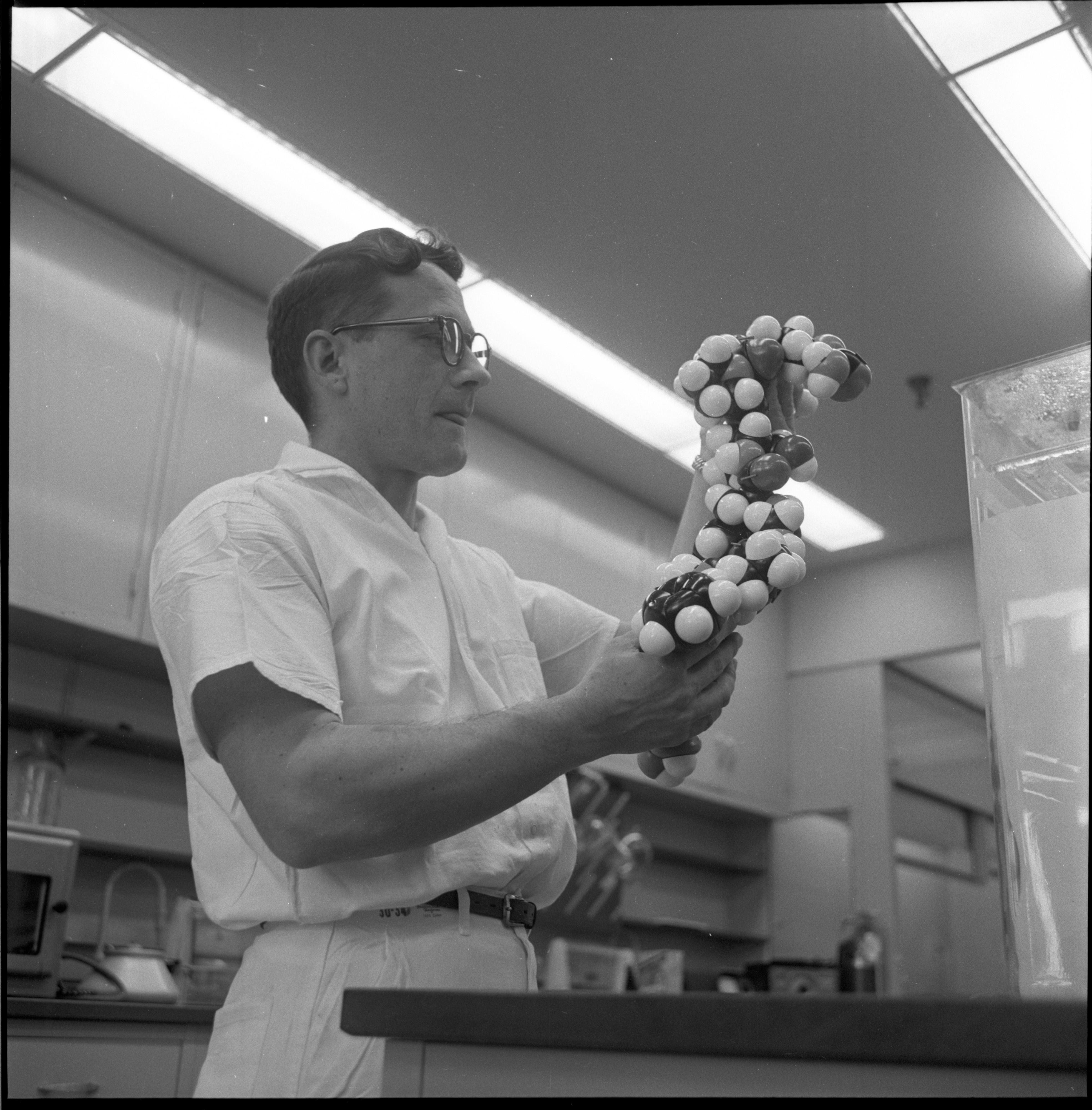 Dr. Ernest D. Nicolaides Holds A Molecular Model Of Kallidin II In A Parke Davis Research Laboratory, May 1962 image