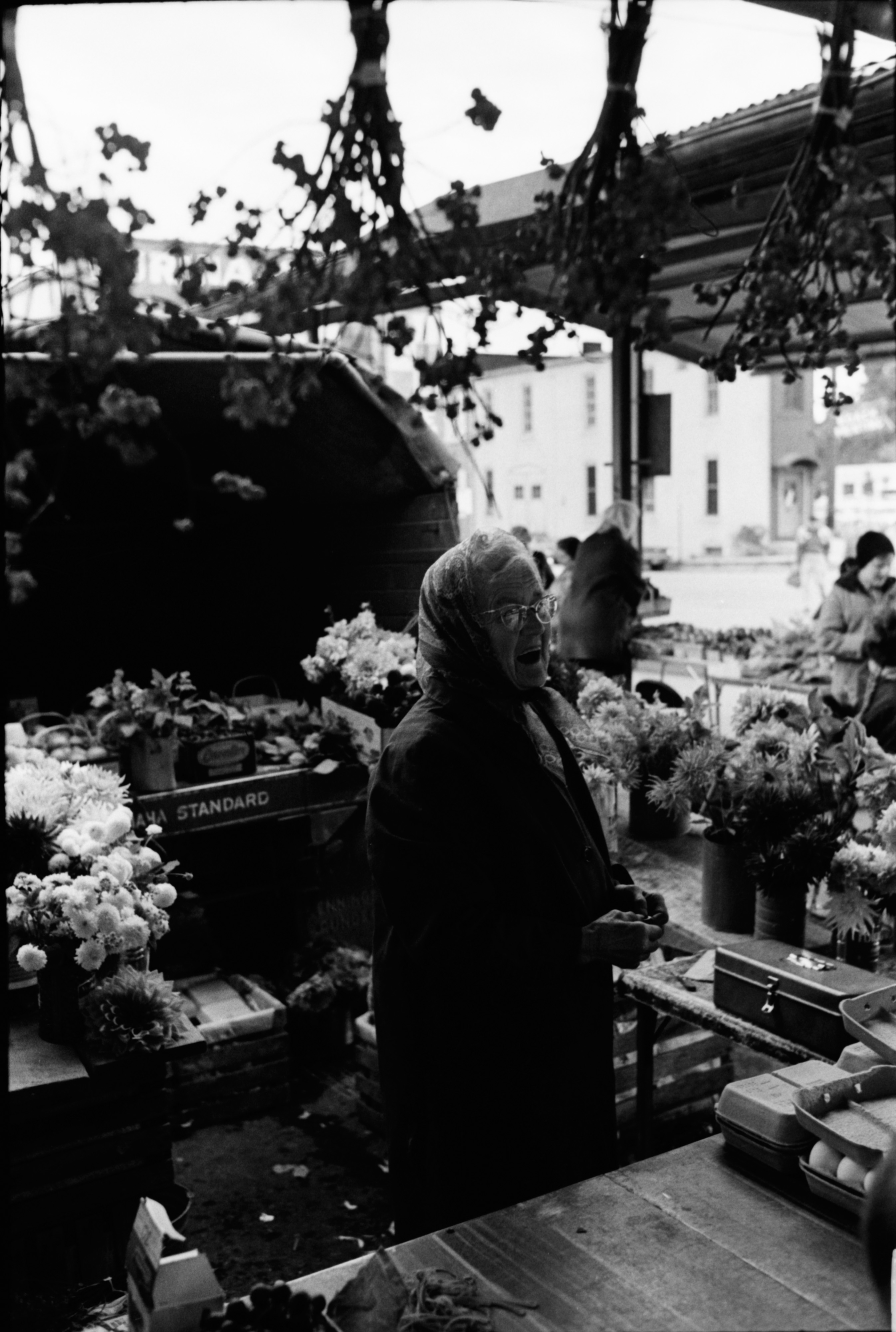 Vera Dieterle at her Farmers Market Booth, October 1968 image