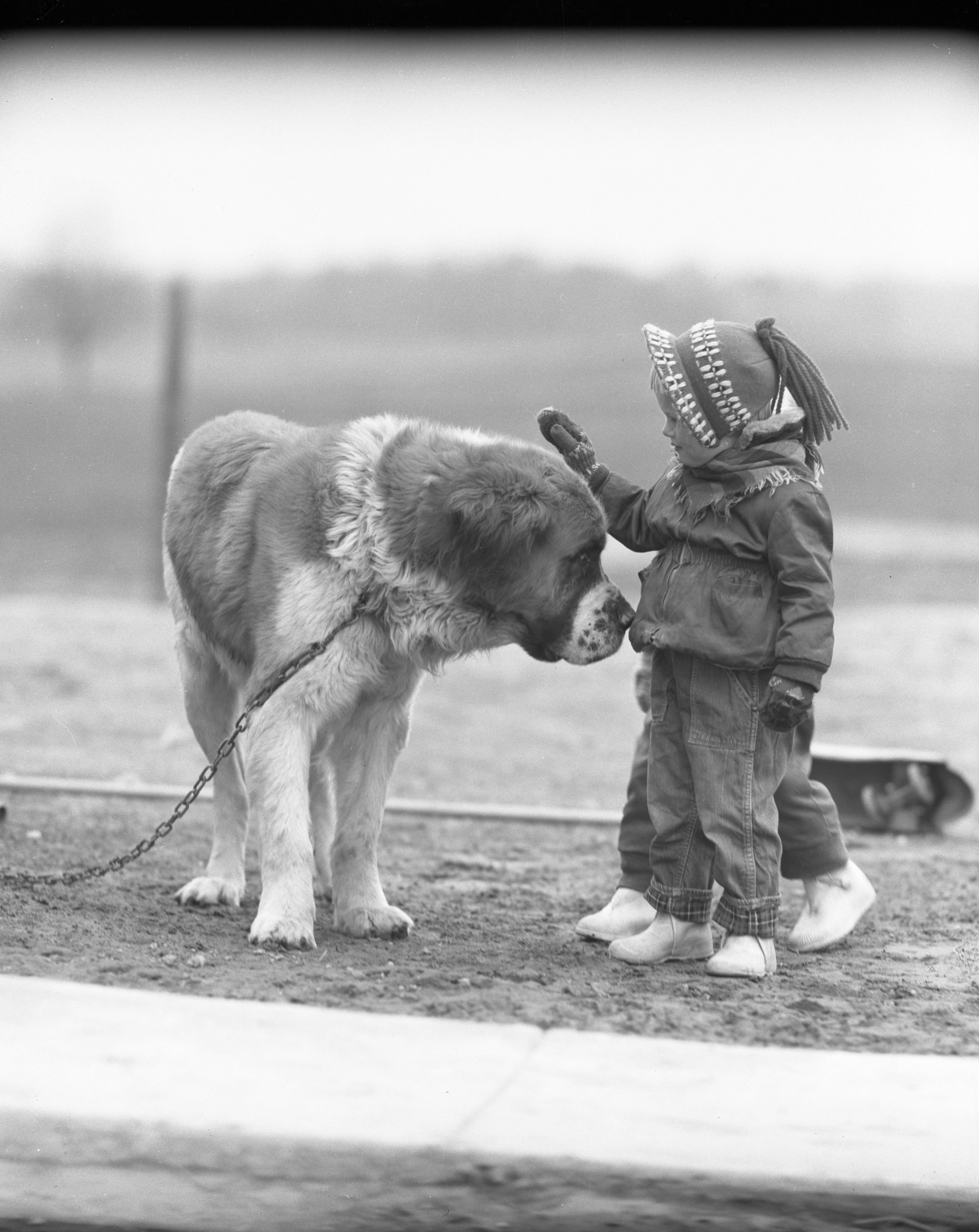 Linda Smith with Duke, the St. Bernard, April 1955 image
