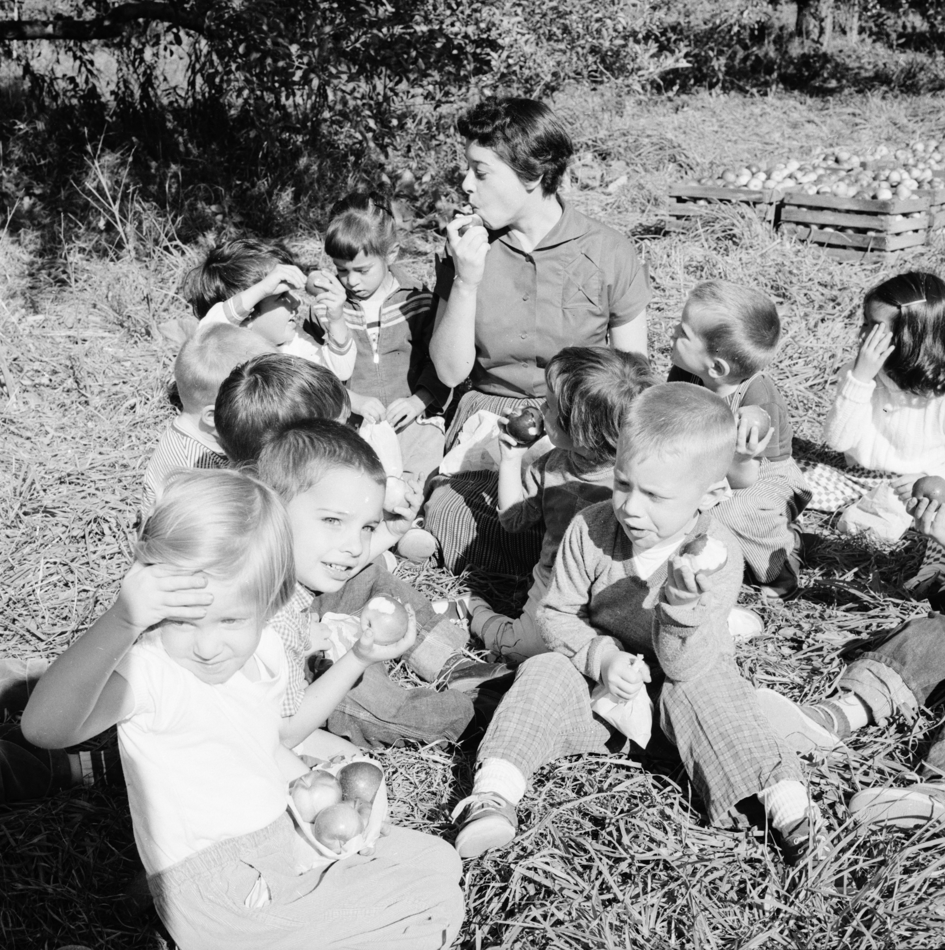 Beverly Popovich And Children From Triangle Nursery School At A Local Orchard October 1958