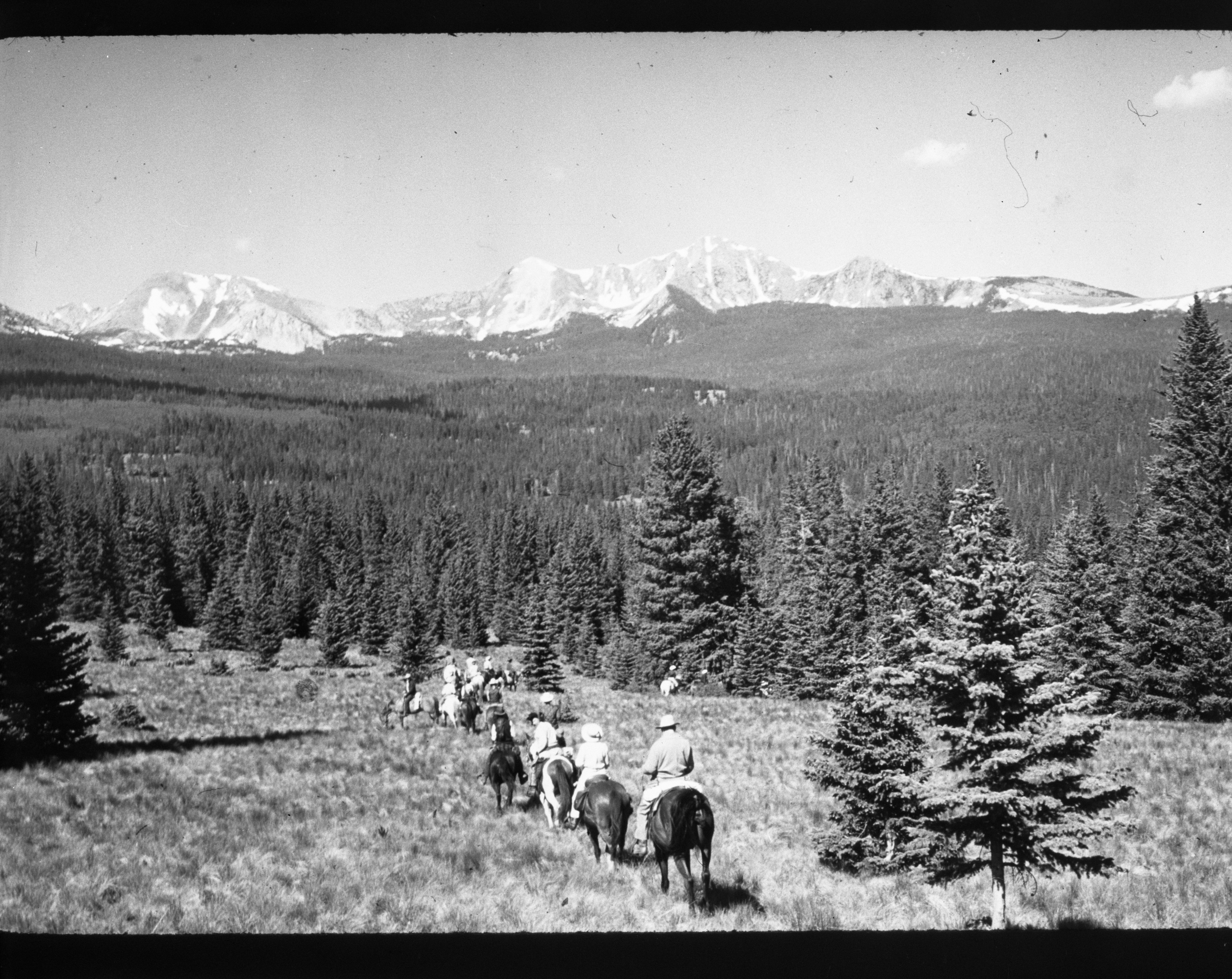 Riders on the trail in Pecos Wilderness Area, April 1969 image