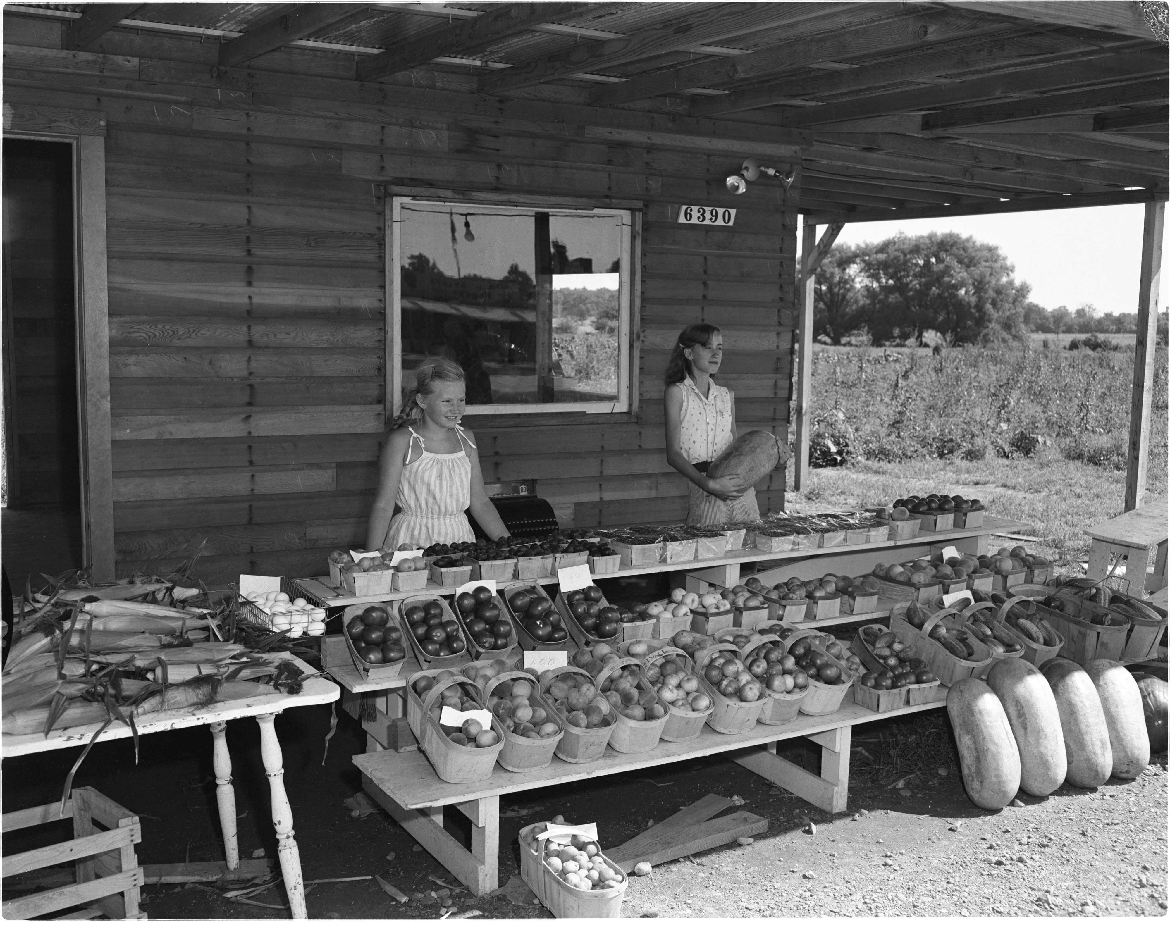 Honeybrook Farm Roadside Stand - Jackson Road (US-12), August 1956 image
