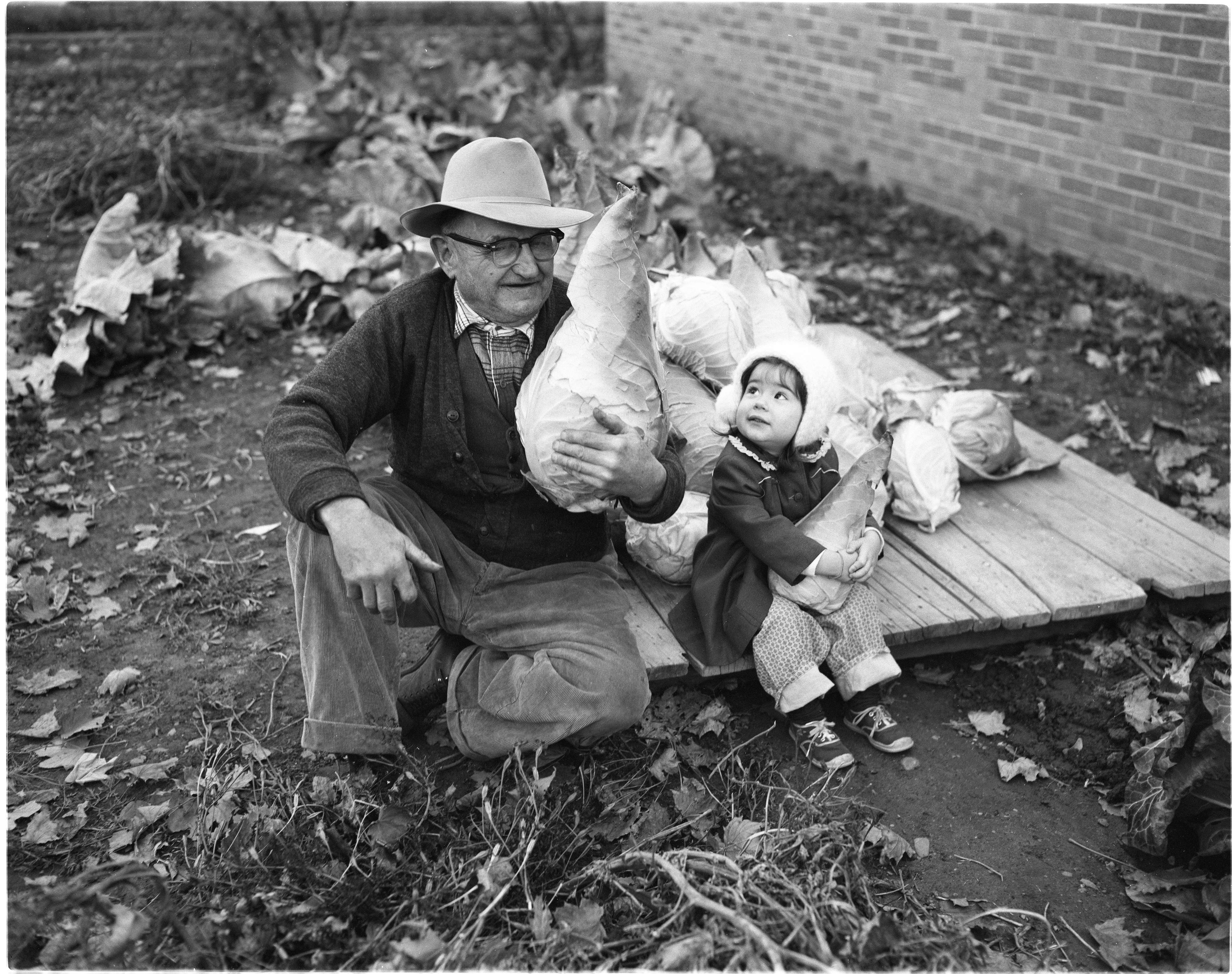 J. H. Seitz Sr. and Granddaughter Susan Reid with Giant Cabbage, November 1958 image
