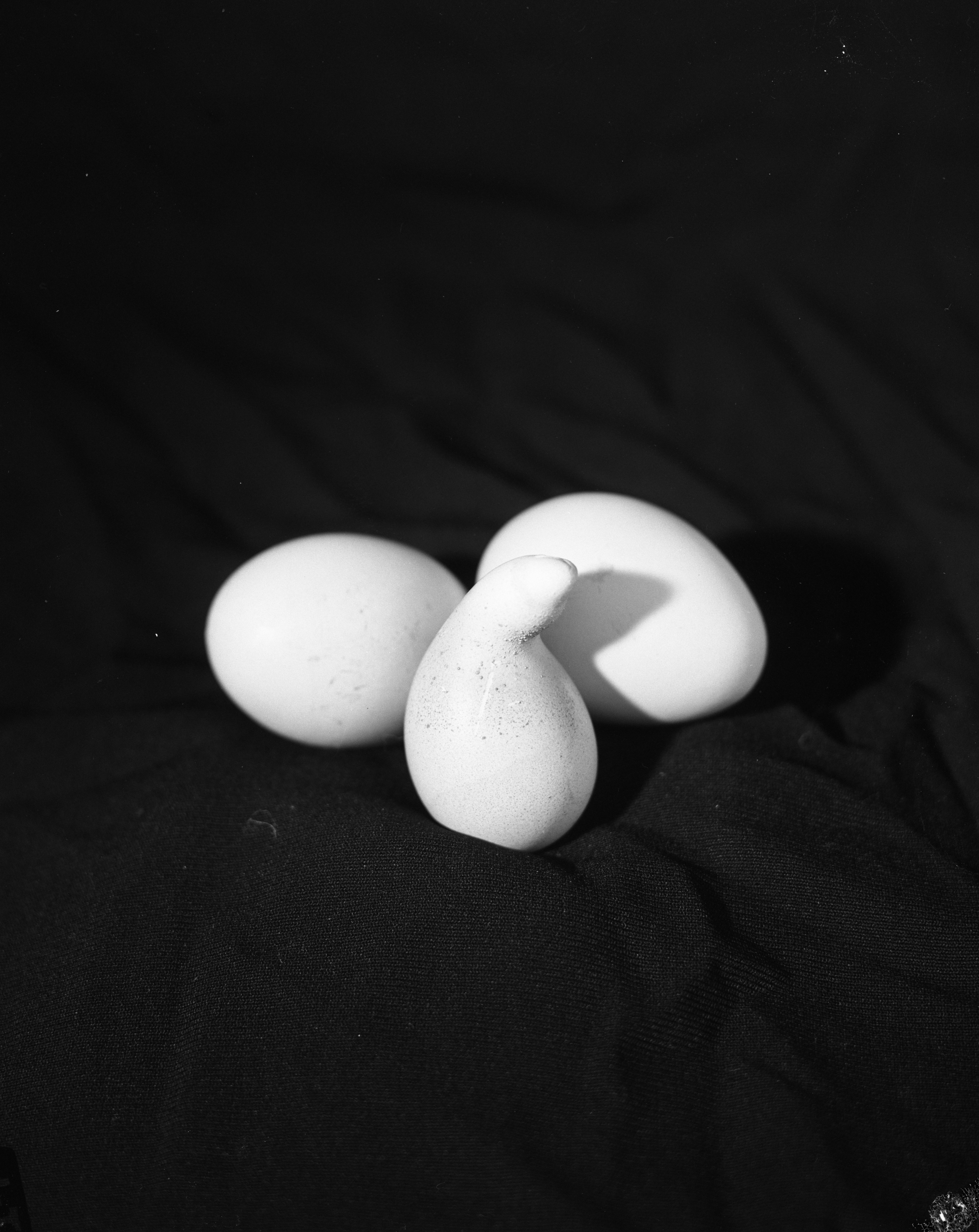 Oddly Shaped Egg, October 1959 image