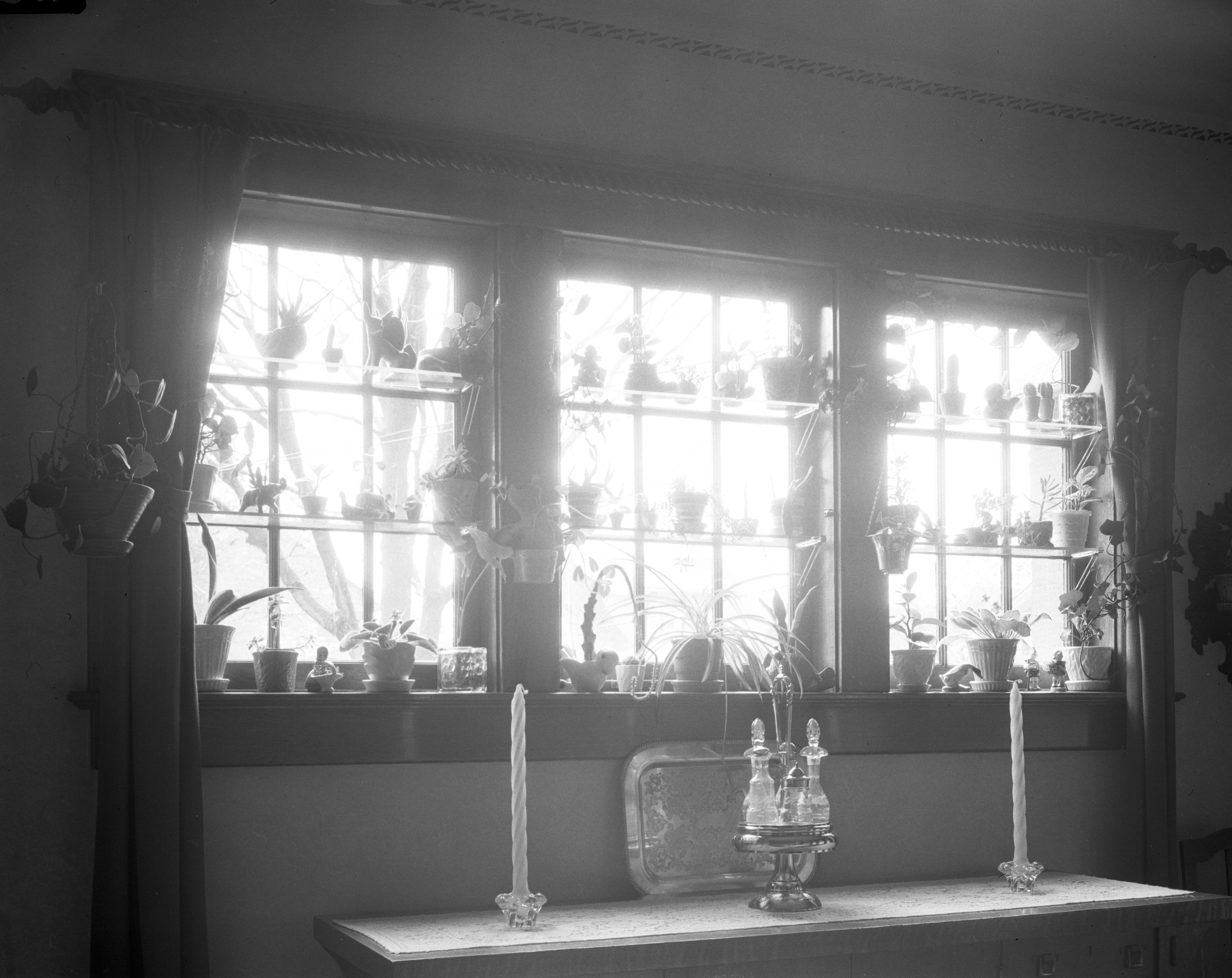 mrs eugene steins garden window november 1942 - Steins Garden