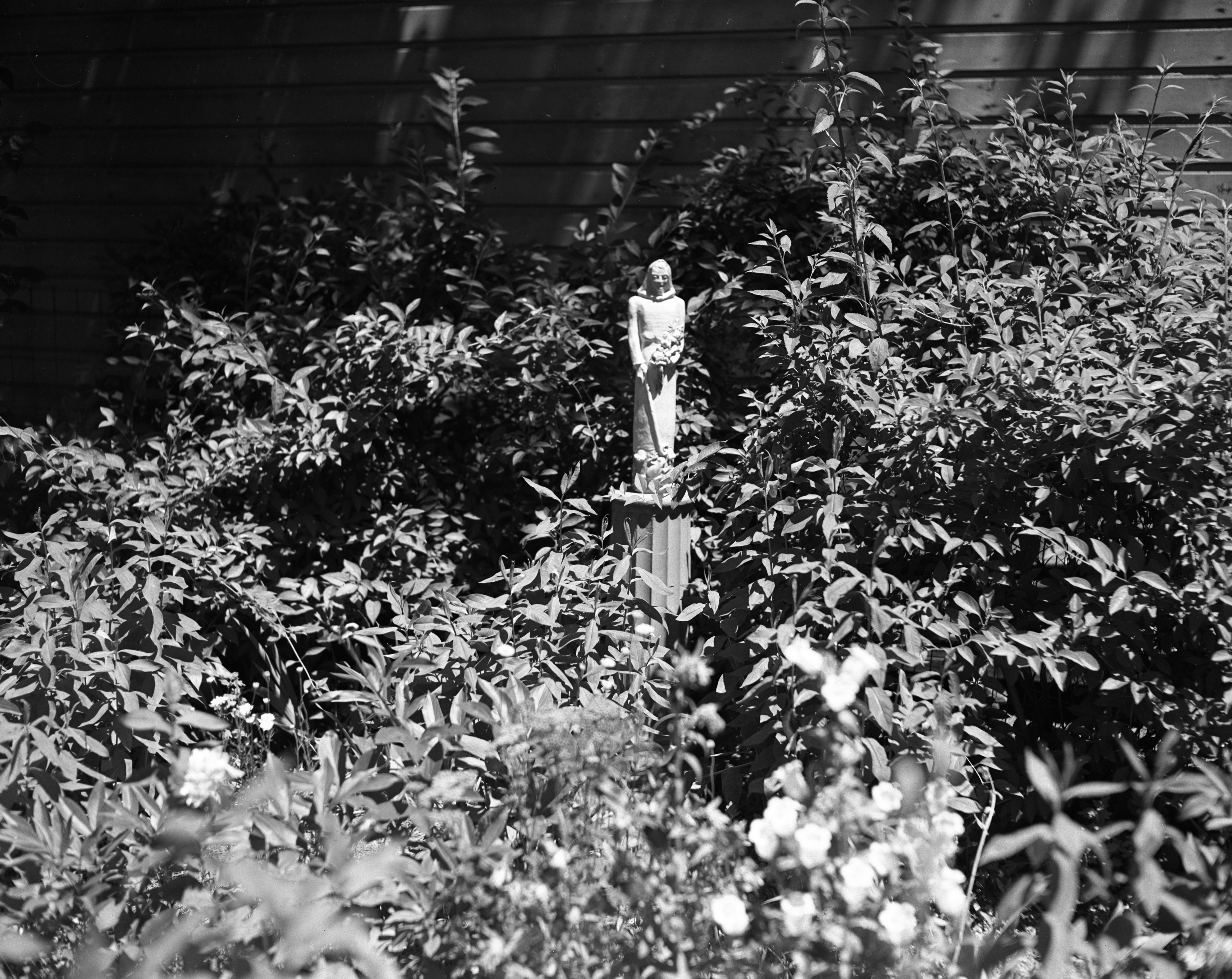 Goddess of Gardens in Clement Luke's garden, 114 N. Ingalls St., July 1947 image