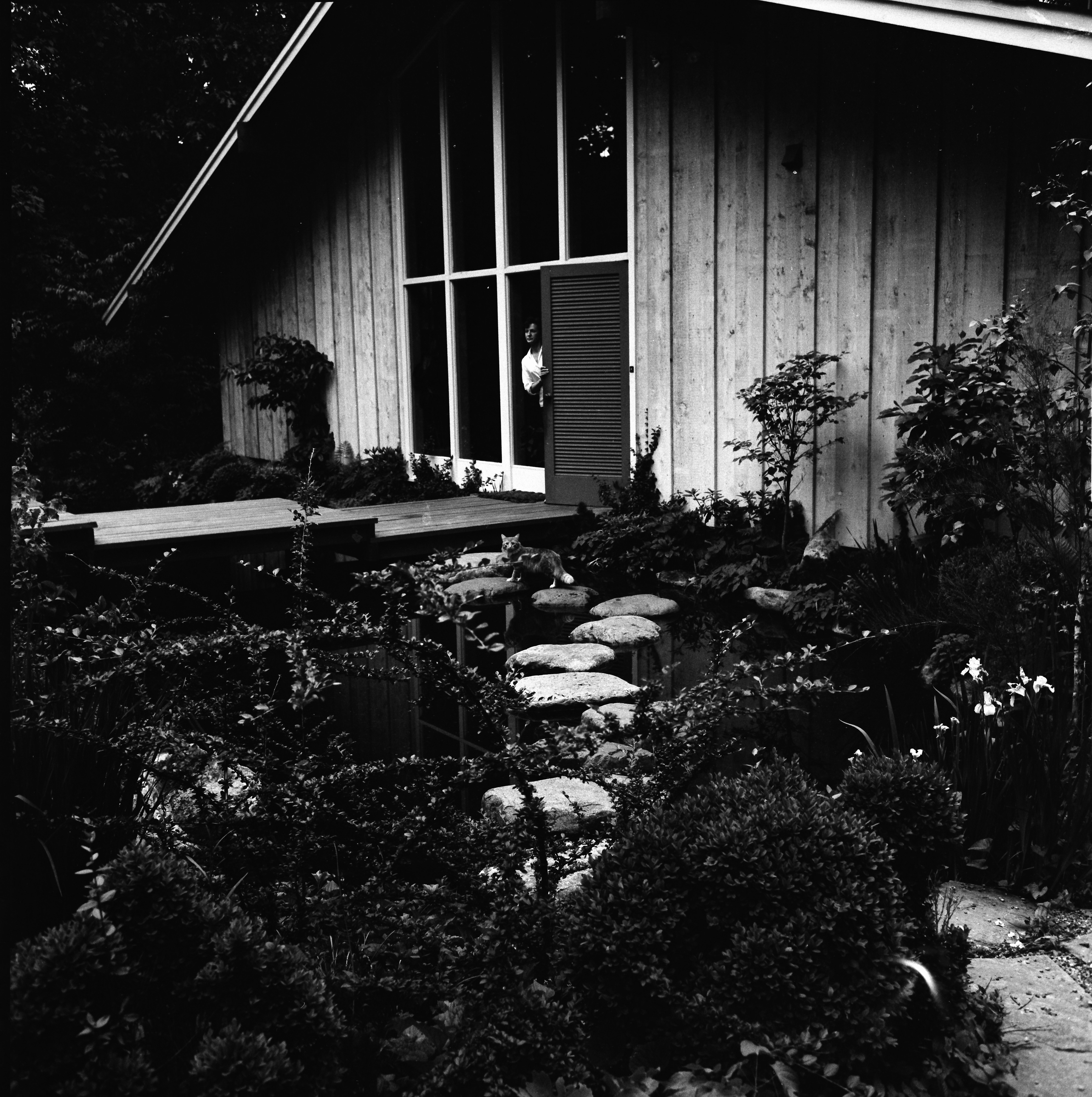 Japanese Garden at L. A. Peter Gosling Home, 324 N. Barton Dr., June 1966 image