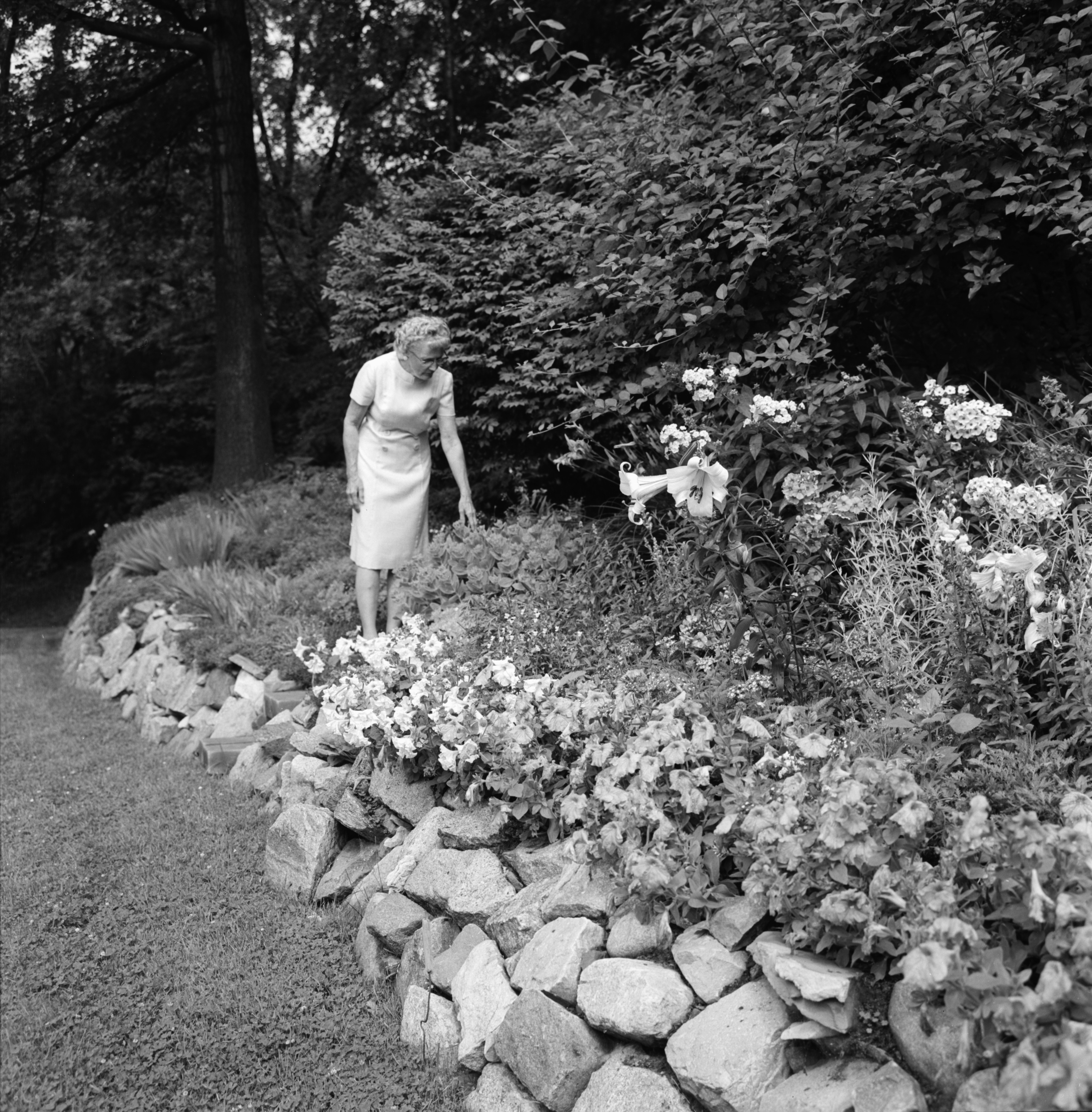 Mrs. Raleigh Schorling and Rock Garden, July 1967 image