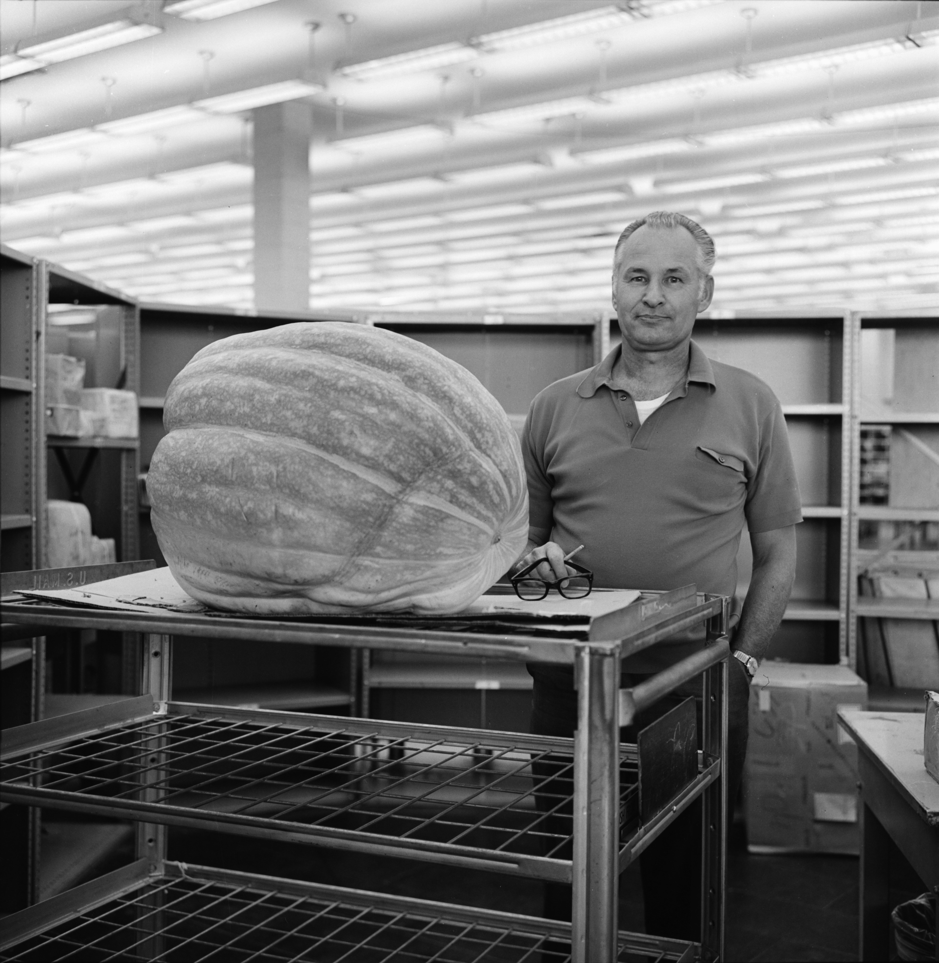 Harry F. Bruneau and Giant Squash, October 1969 image
