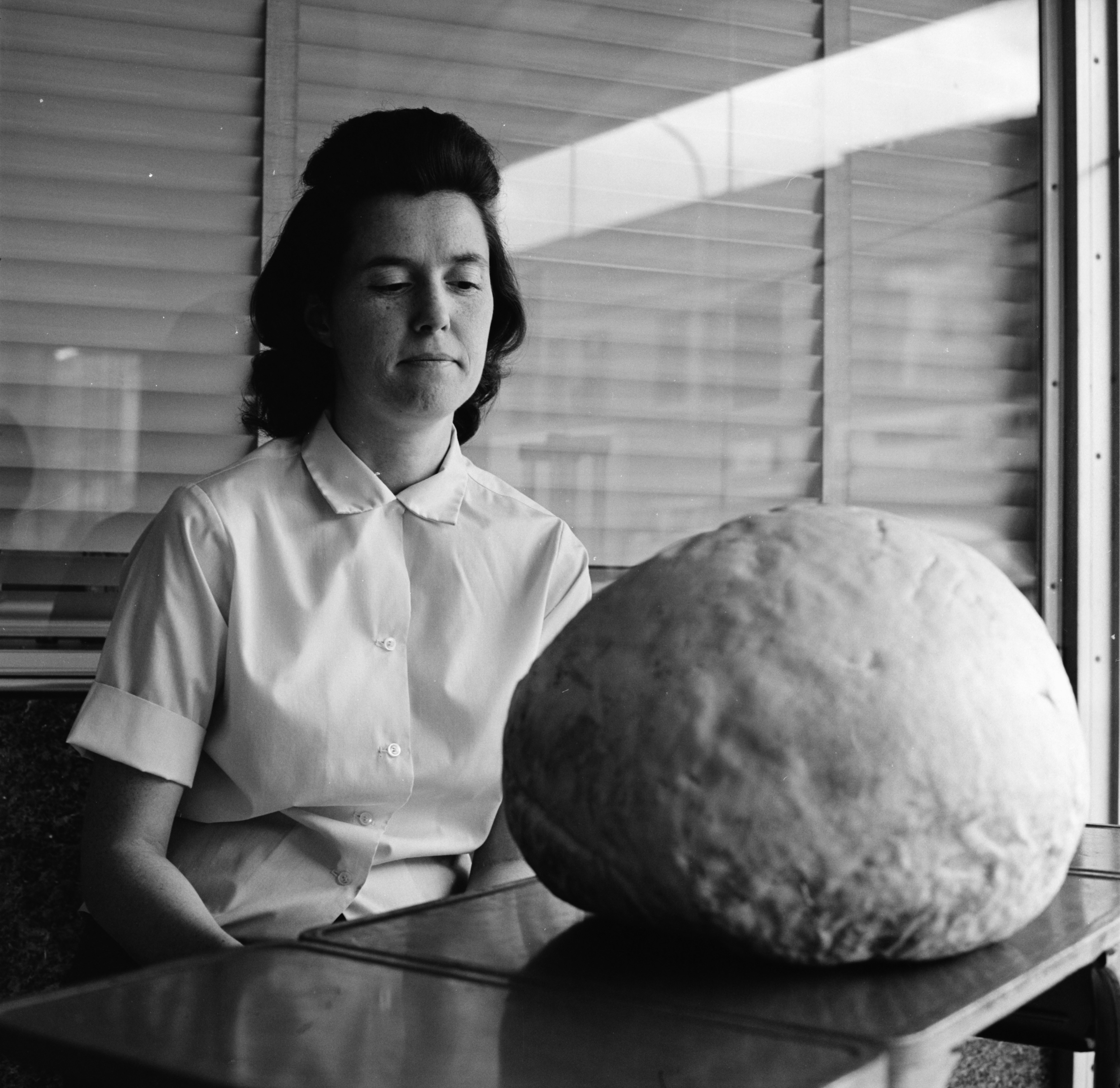 Image from Mrs. James England and Giant Edible Mushroom, October 1970