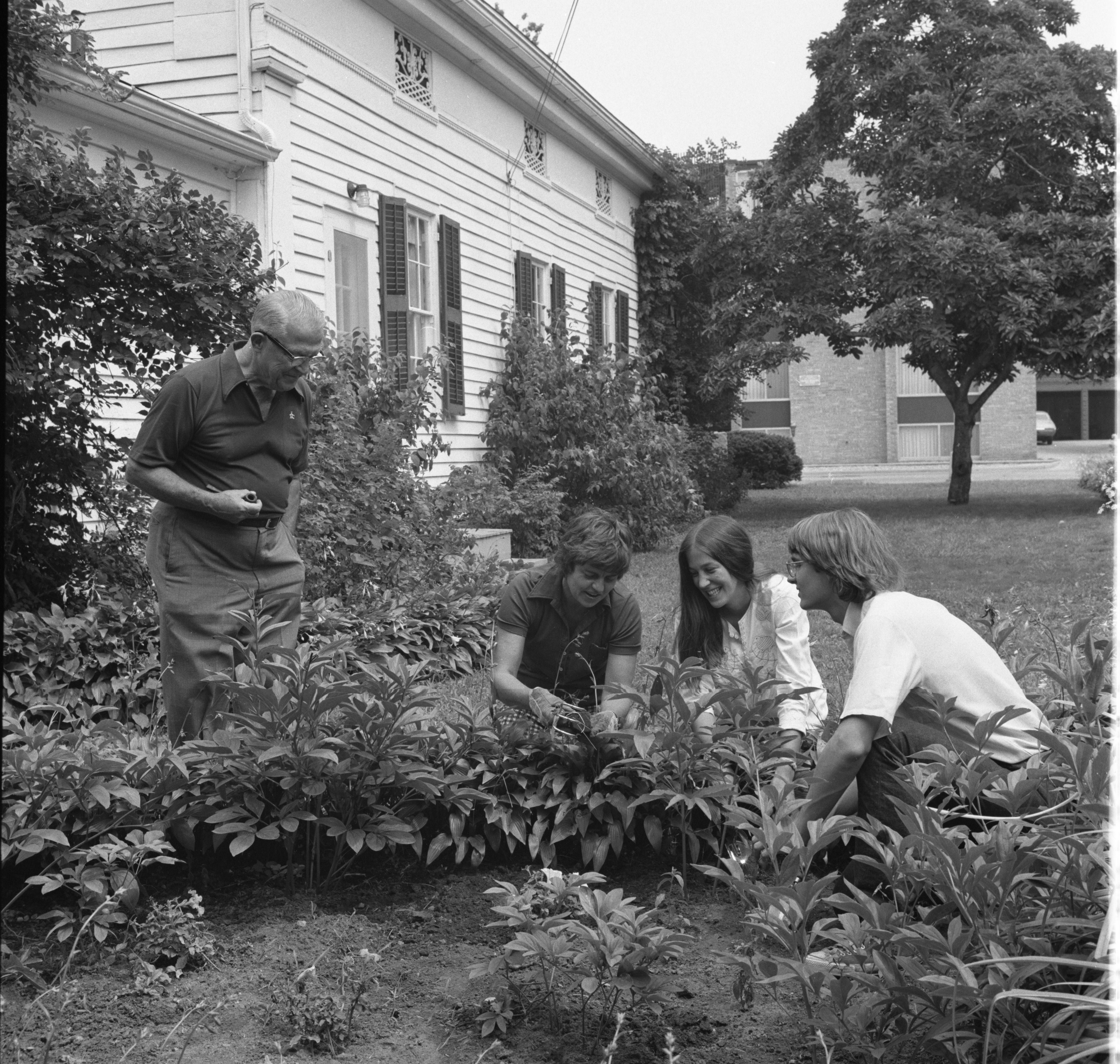 University of Michigan Students Restore Garden at  Kempf House Museum, August 1973 image
