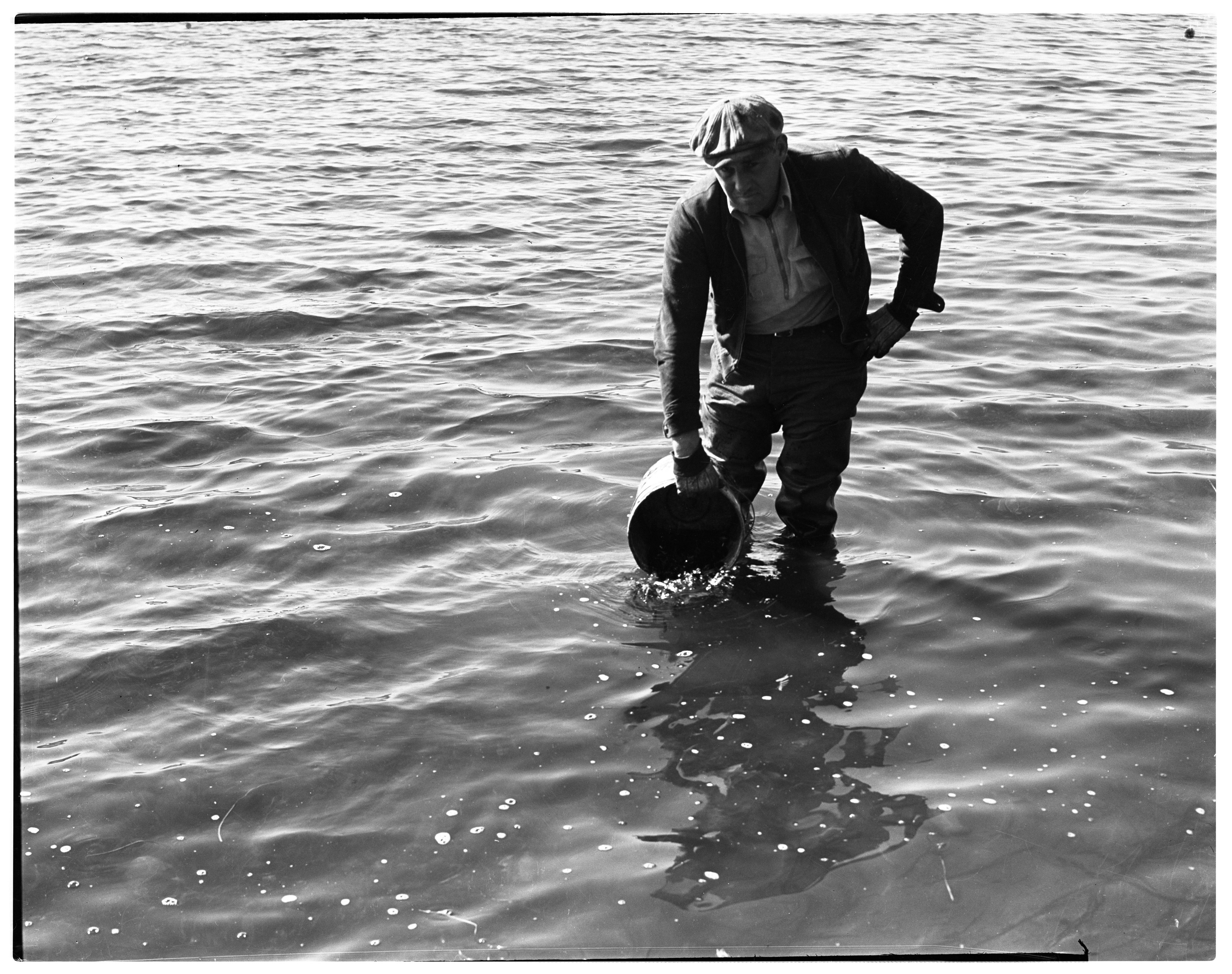J. R. Meadows Plants Largemouth Bass In Pleasant Lake, October 1938 image