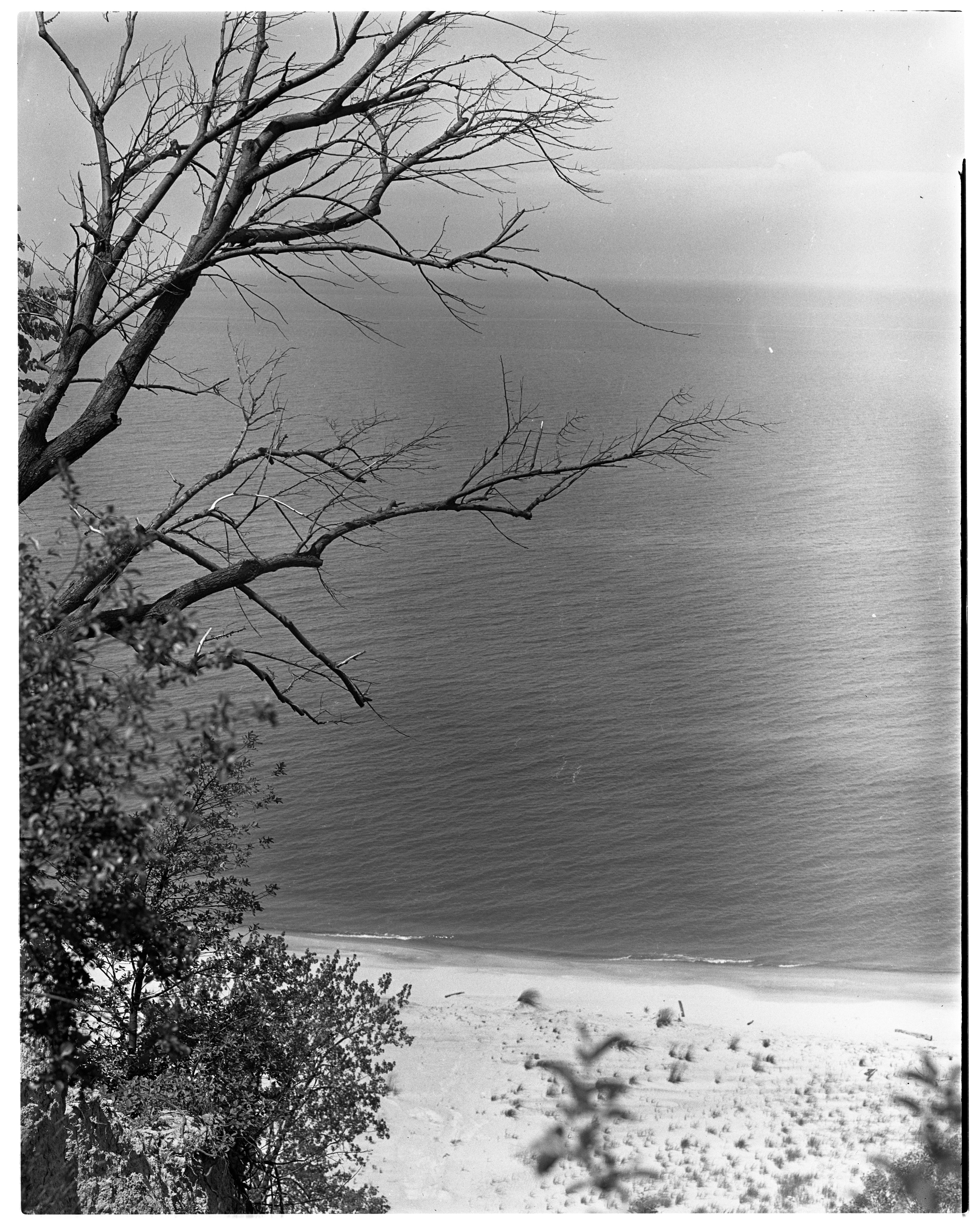 Lake Michigan Sand Dunes image