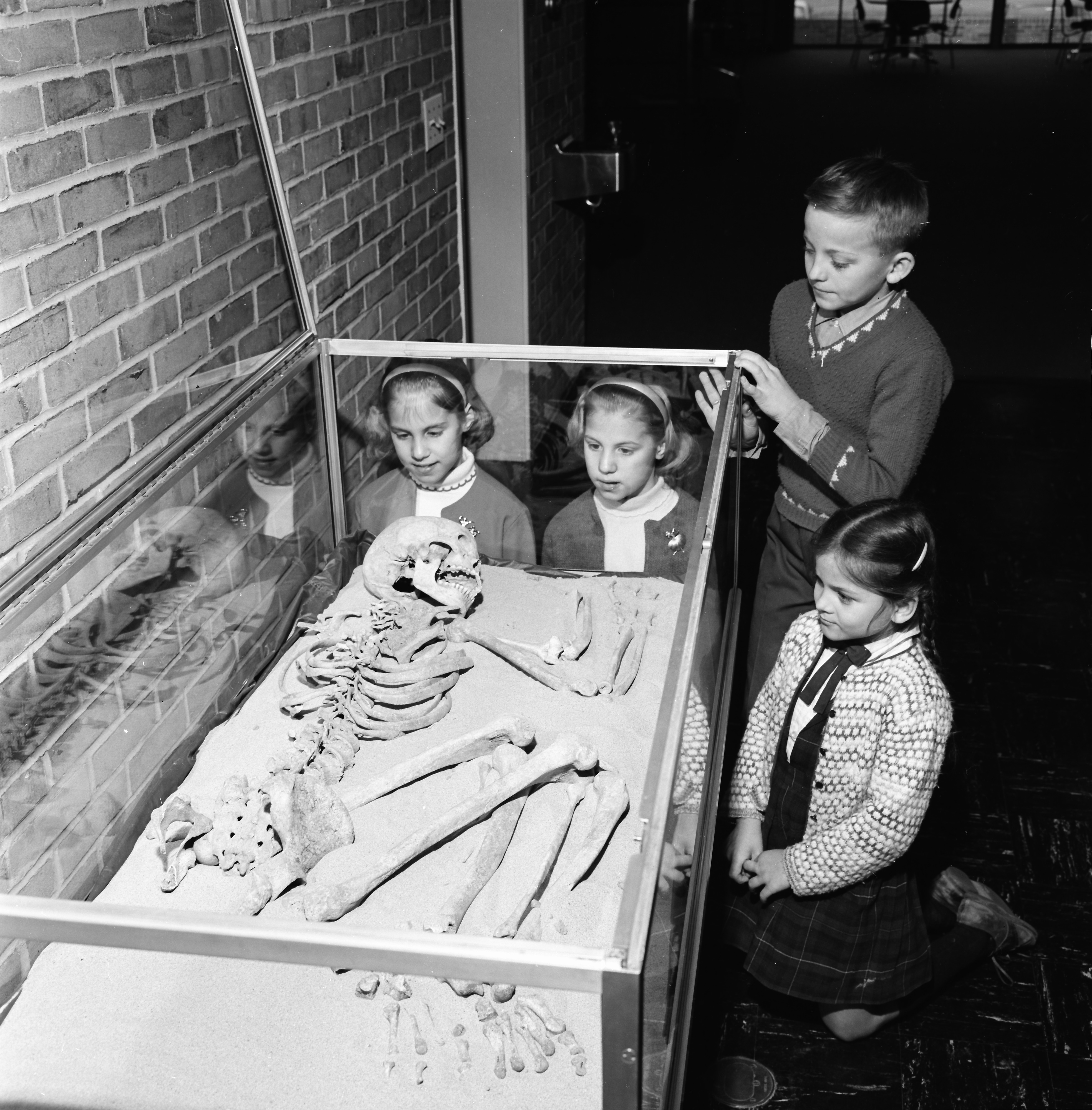 Children View Native American Skeleton at Loving Branch Library, April 1966 image