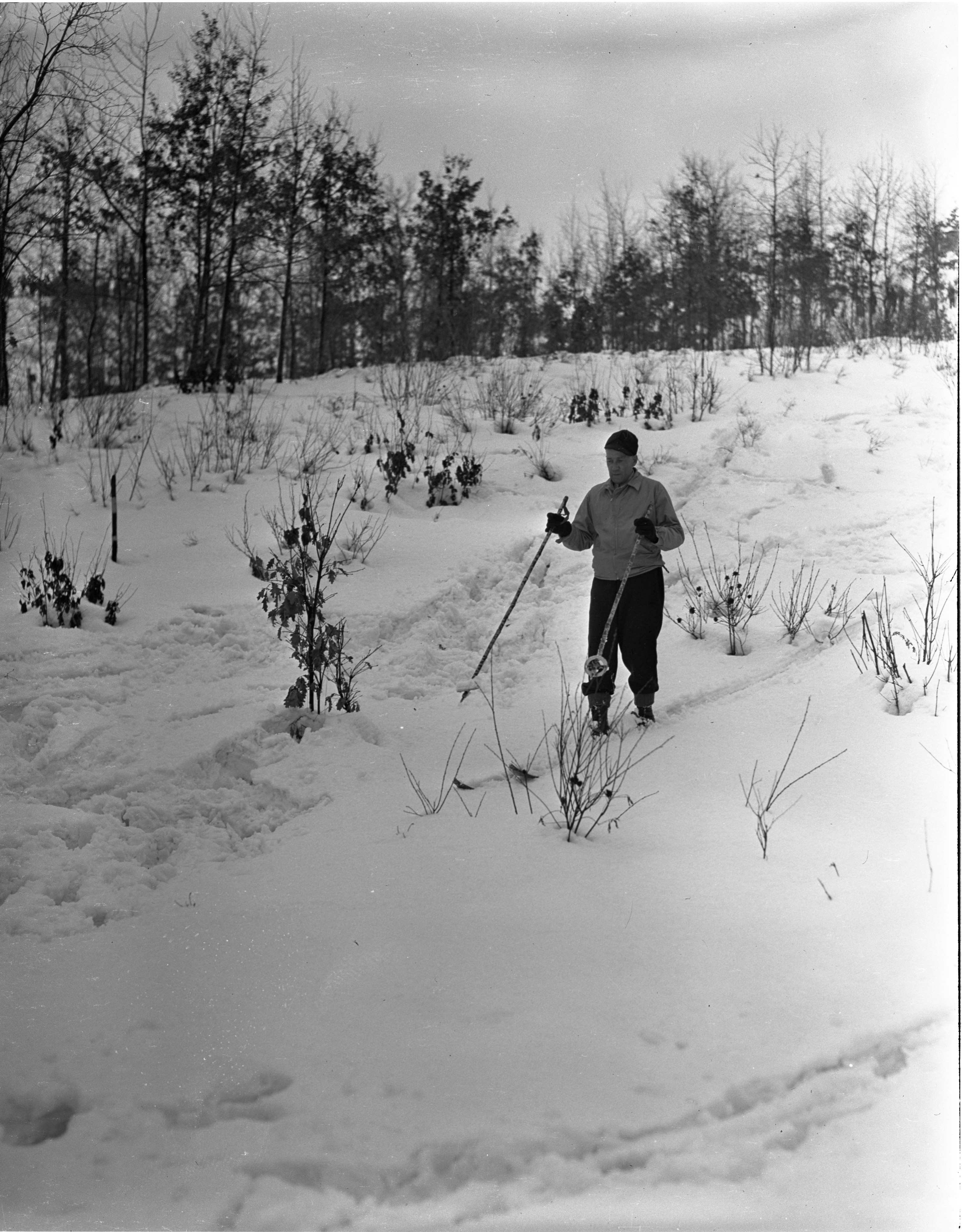 Skier At Grayling Winter Sports Park, January 1940 image