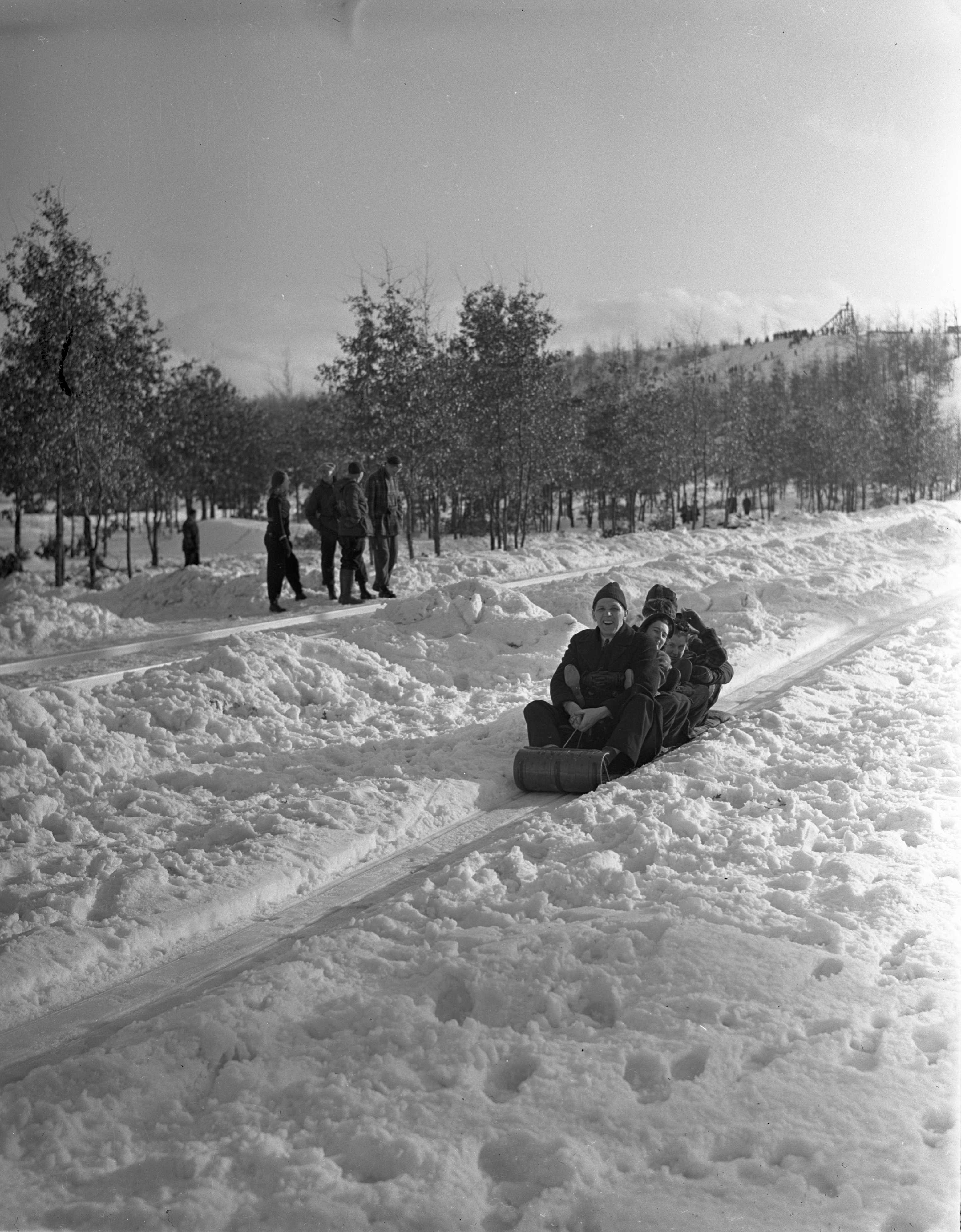 Group Finishes The Toboggan Slide At Grayling Winter Sports Park, January 1940 image