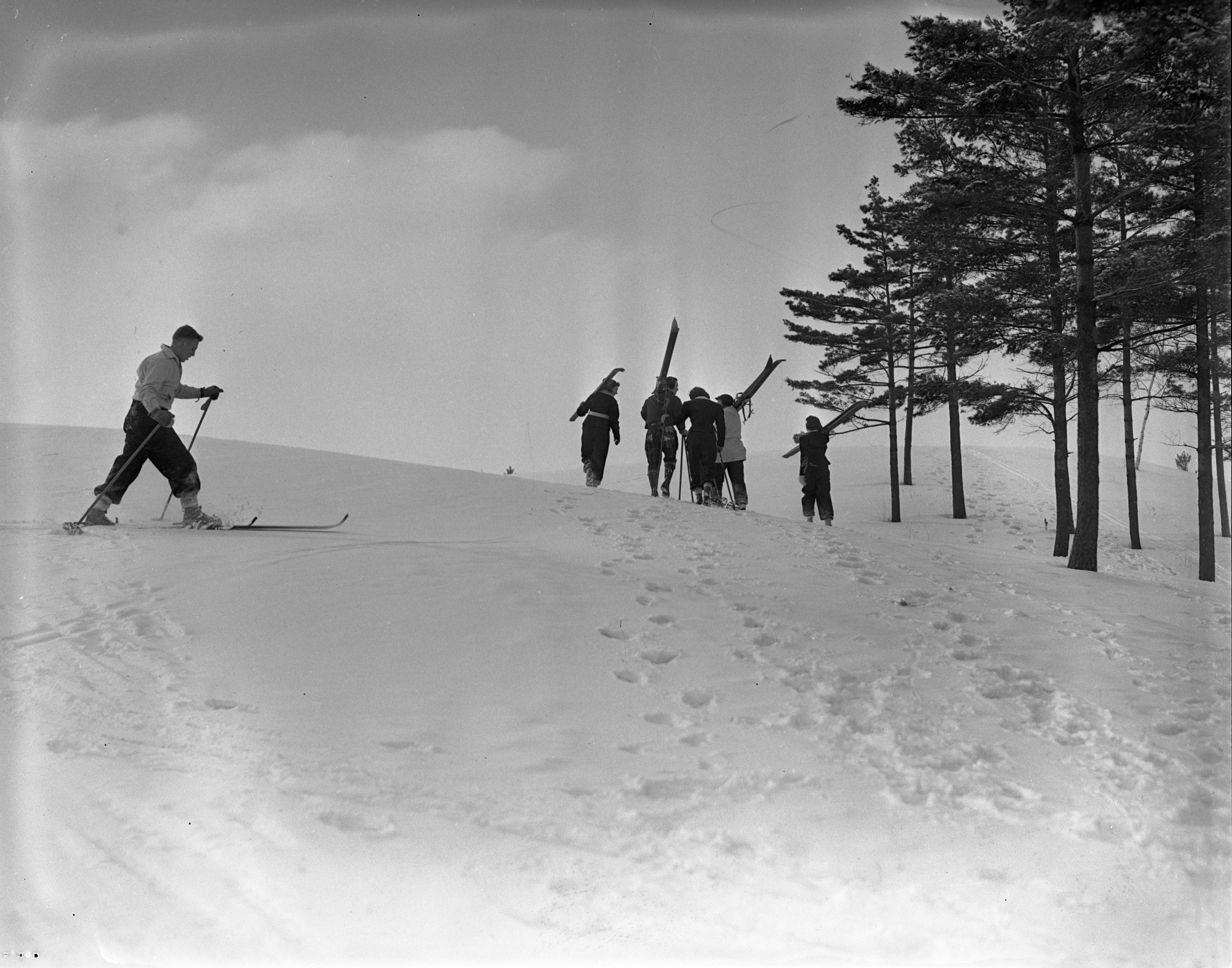 Group Walks Up A Hill With Skis Over Their Shoulders In Traverse City, January 1940 image