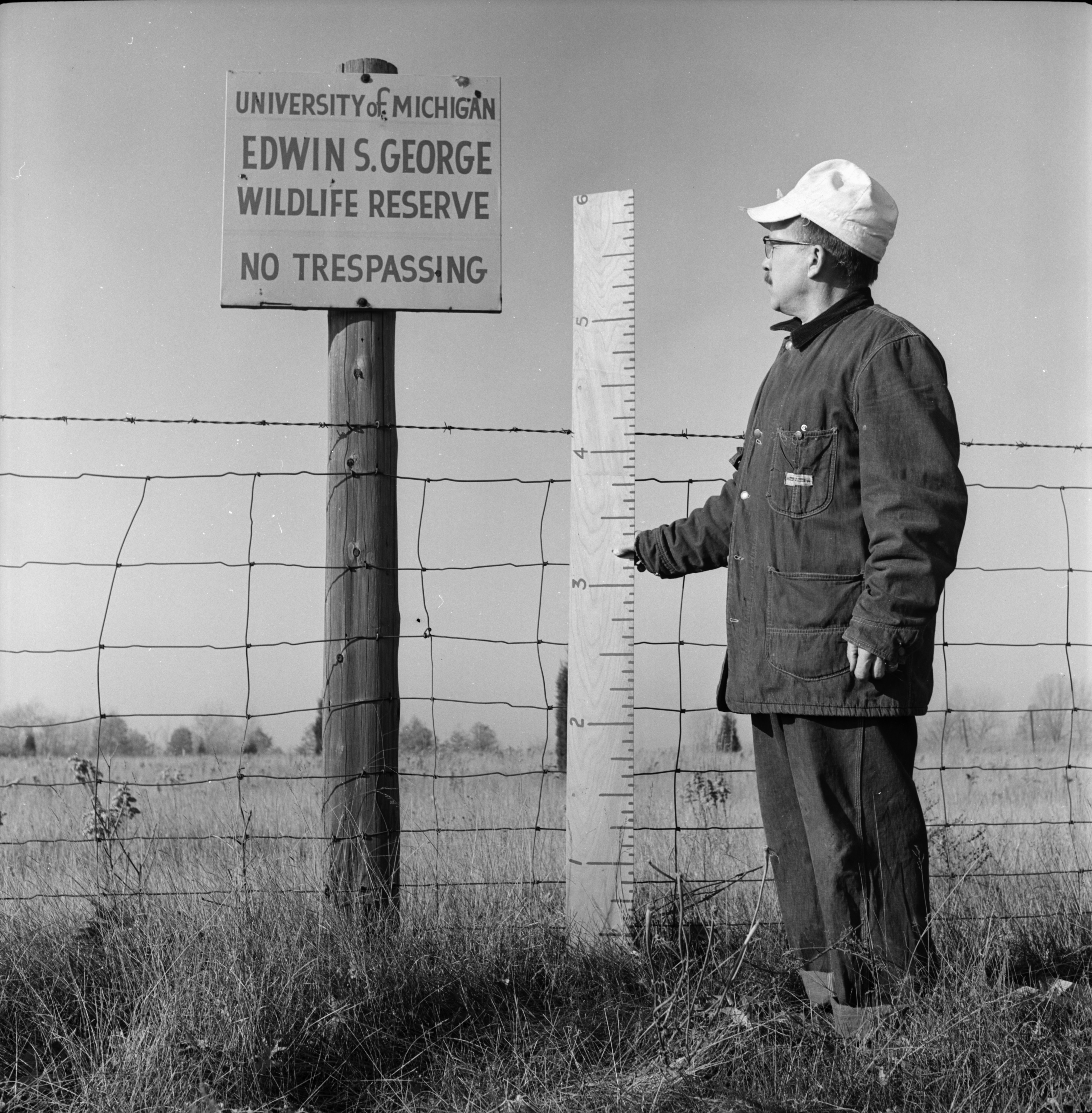 Fence At Edwin S. George Wildlife Reserve, December 1962 image