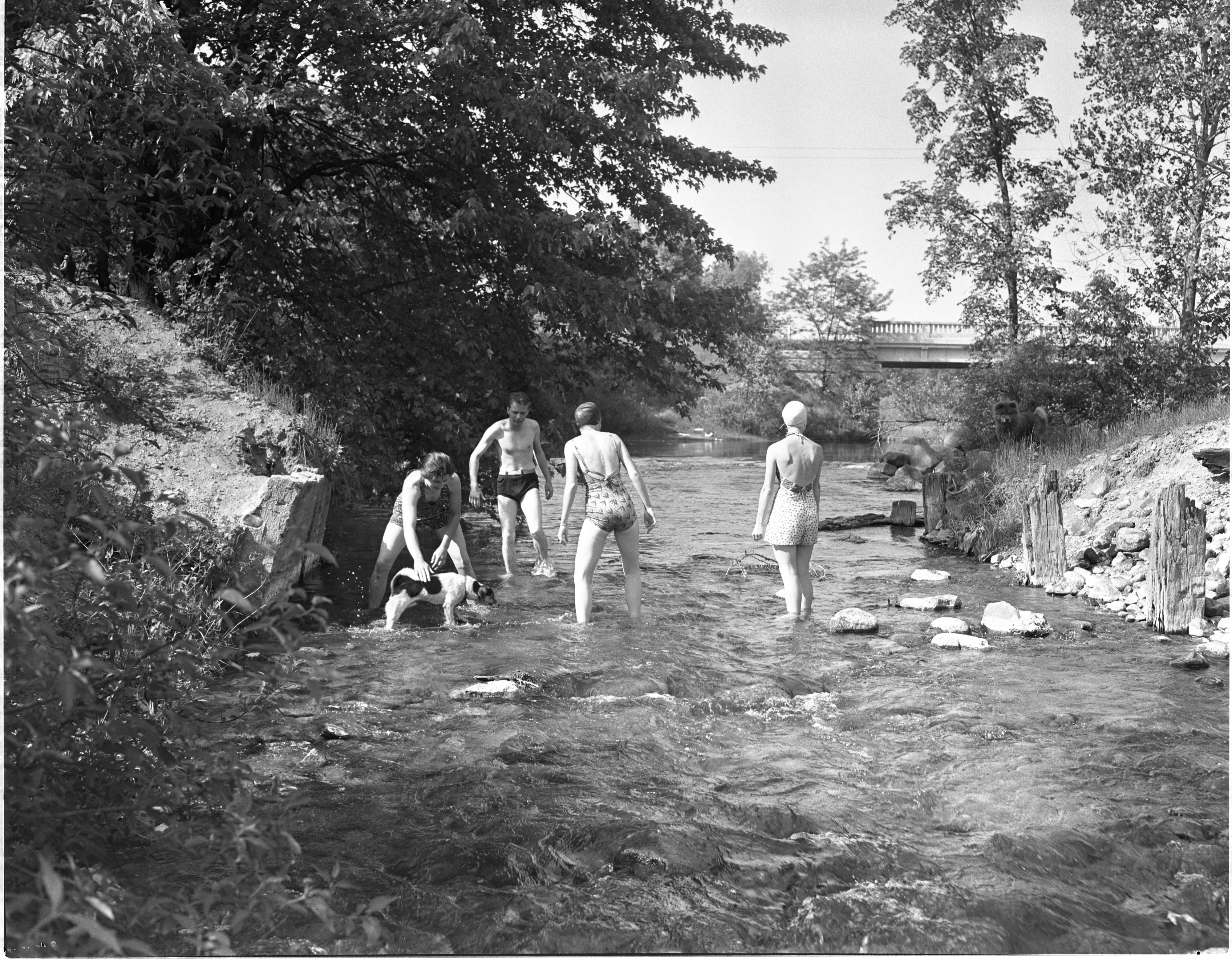 Wading In The Huron River Near Hudson Mills, June 1940 image