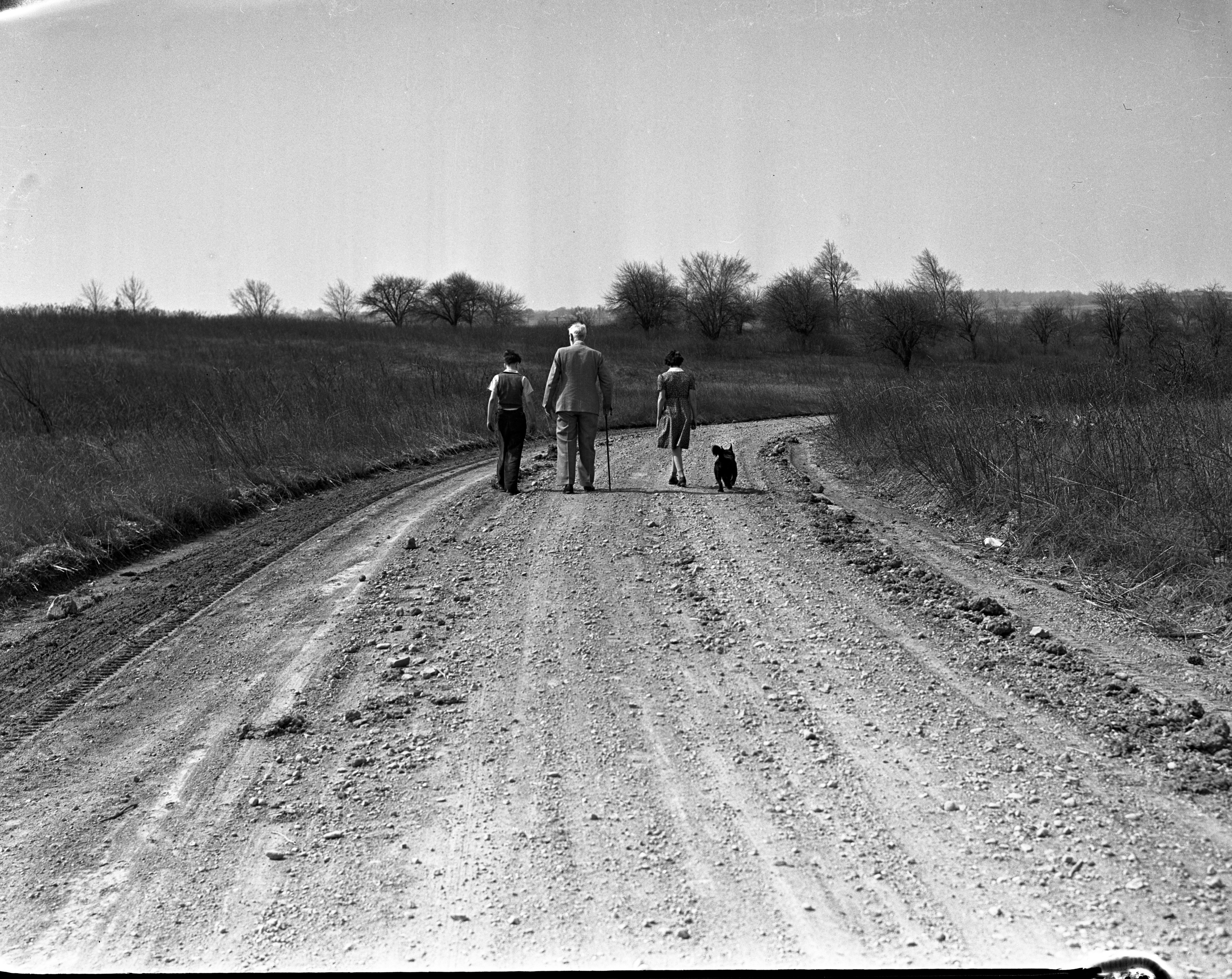 Bobby and the Old Professor and Julia walking down the road, 1938 image