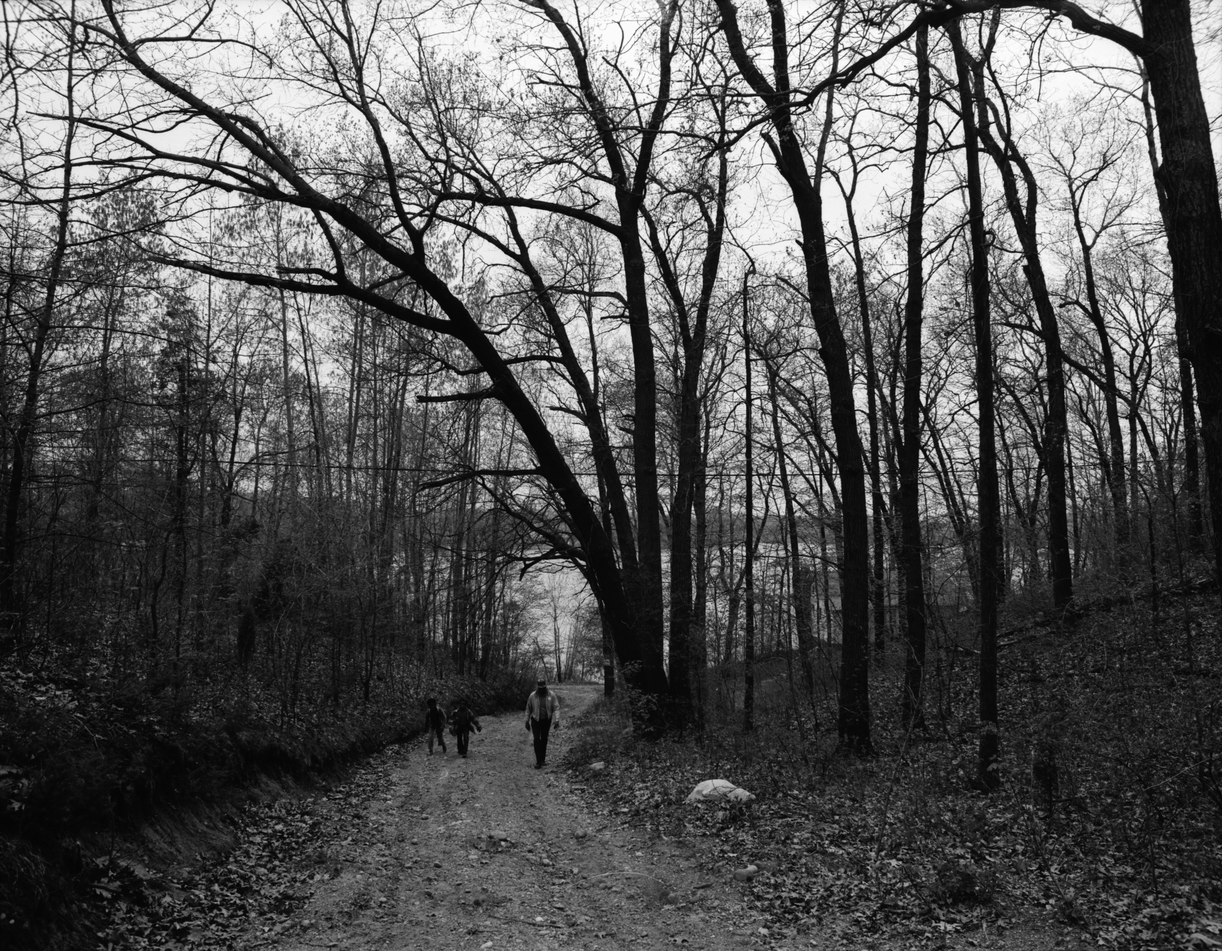 Director Walter Hill, Melvin Harris, and Jerry Yarrington Walk on a Trail at the Ann Arbor Community Center's Camp Takona, June 1972 image