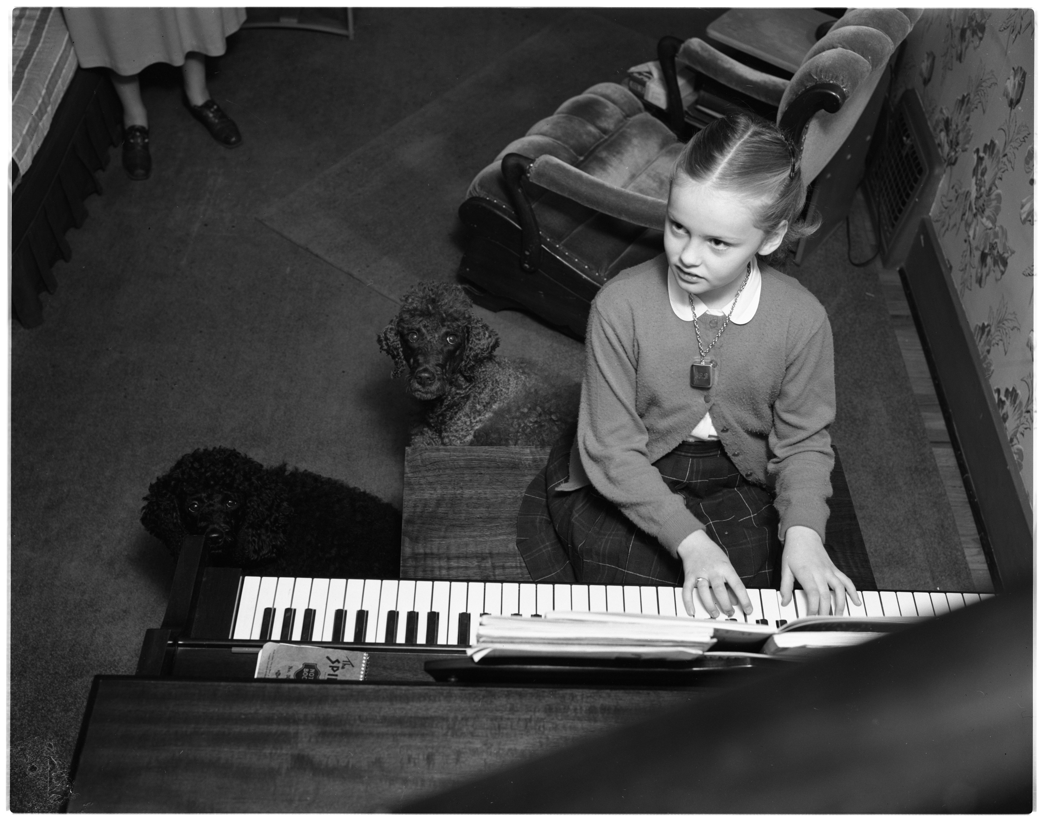 Tina Bjornstad plays the piano for her pet poodles, January 1956 image