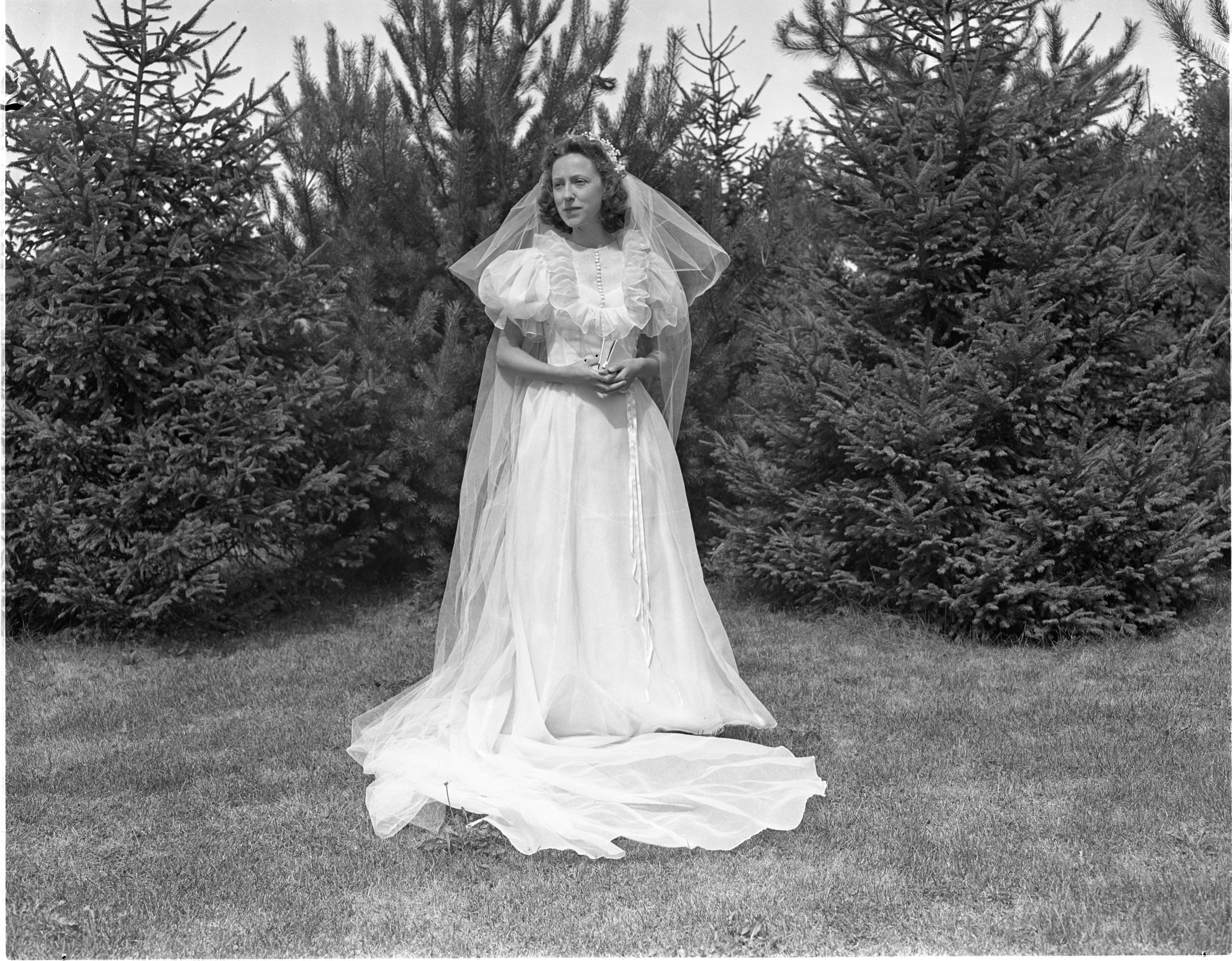Mary Alice Gies - Bride Of David Lincoln Hatch, August 1940 image