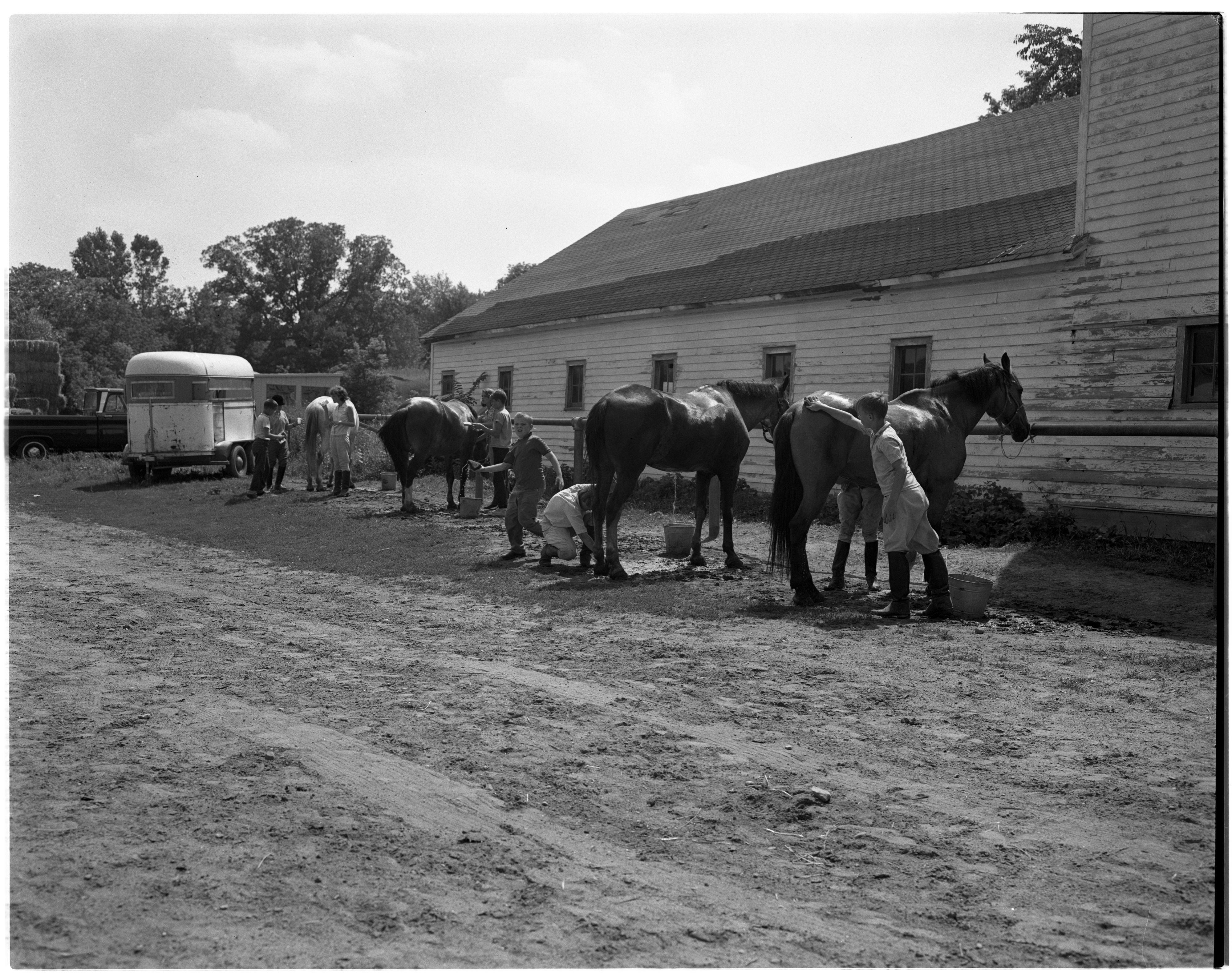 Grooming the Horses - Huron River Stables, July 1964 image