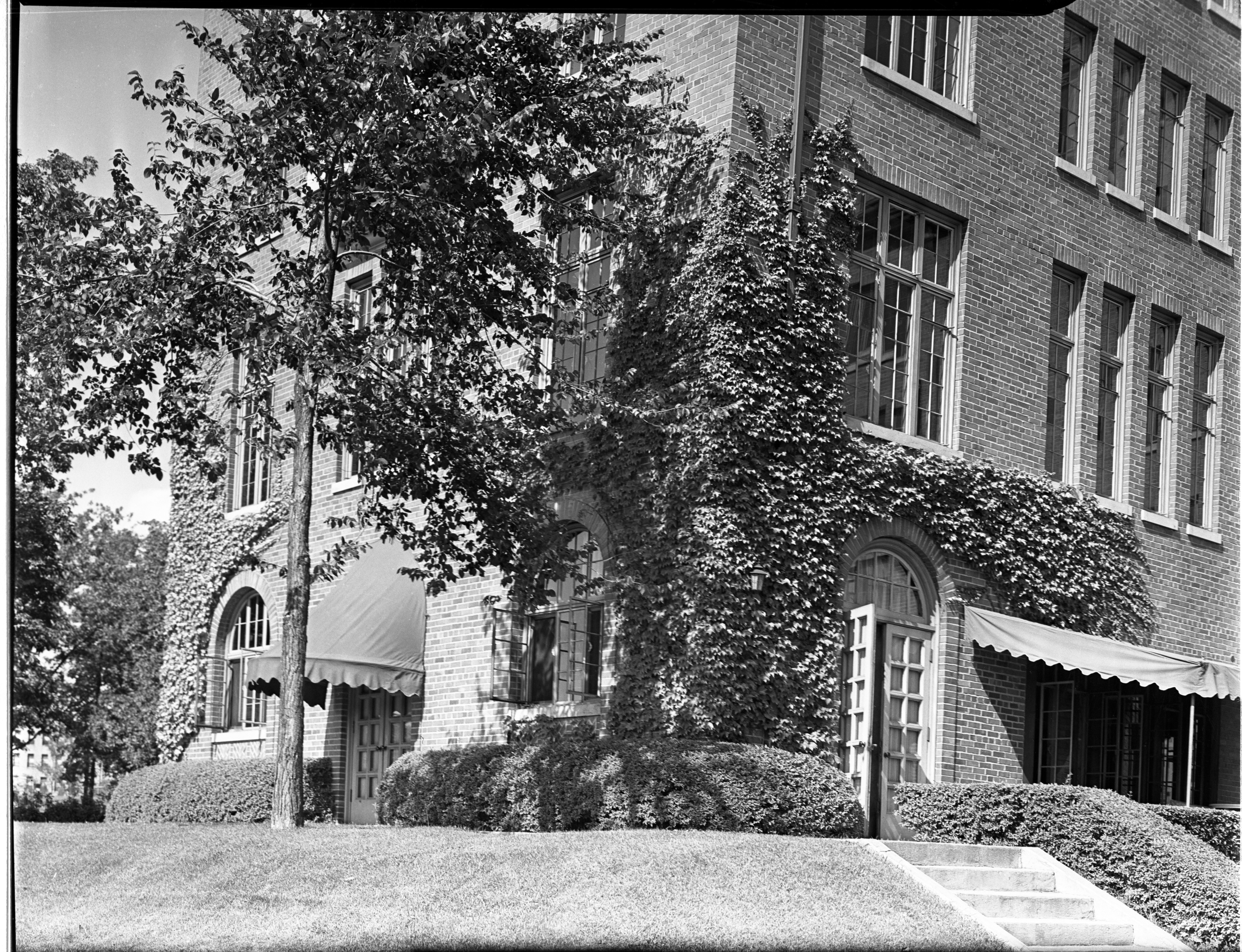 Ivy on central campus buildings, University of Michigan, August 1938 image