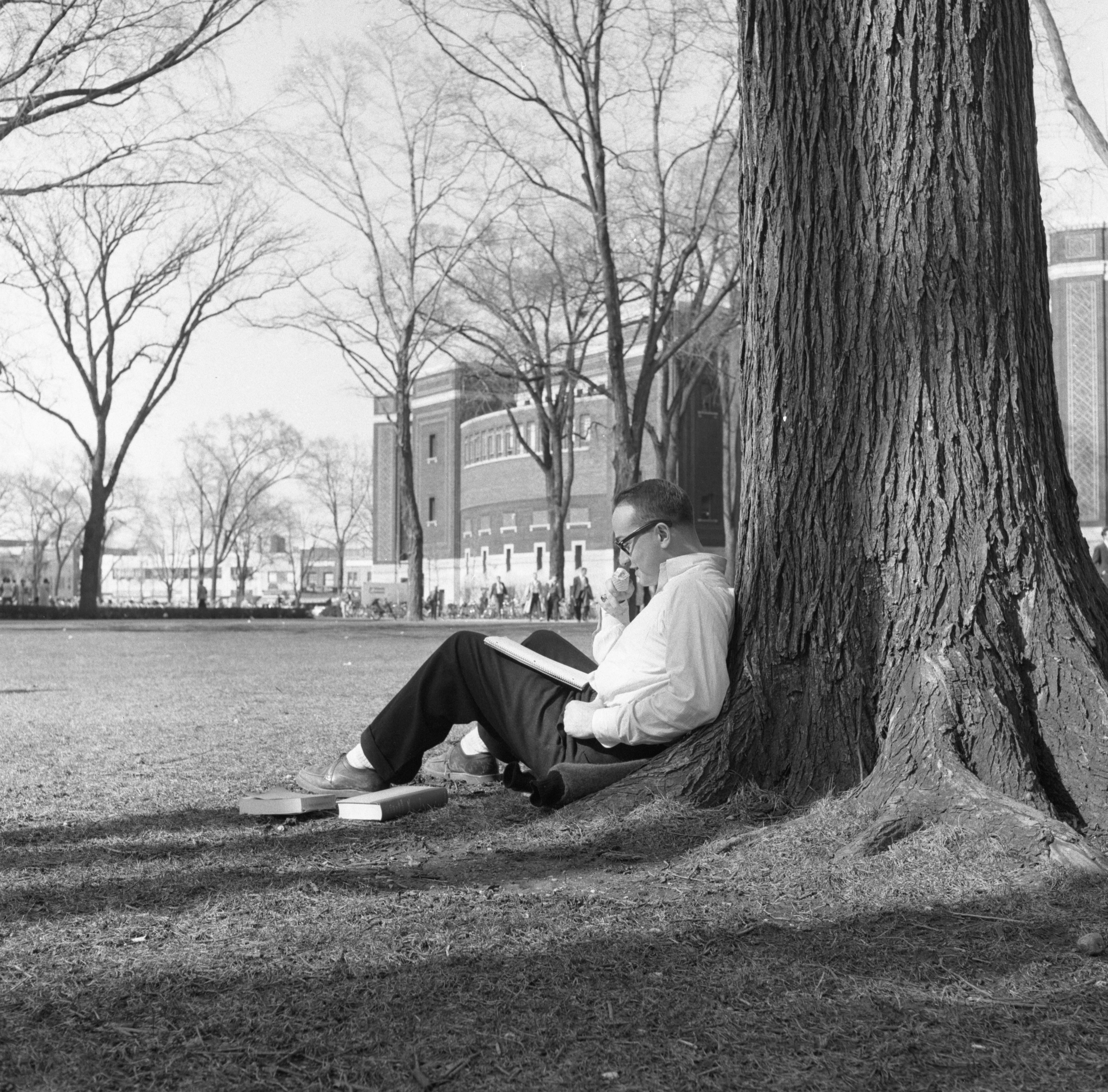 University of Michigan Student Studying On The Diag, March 1957 image