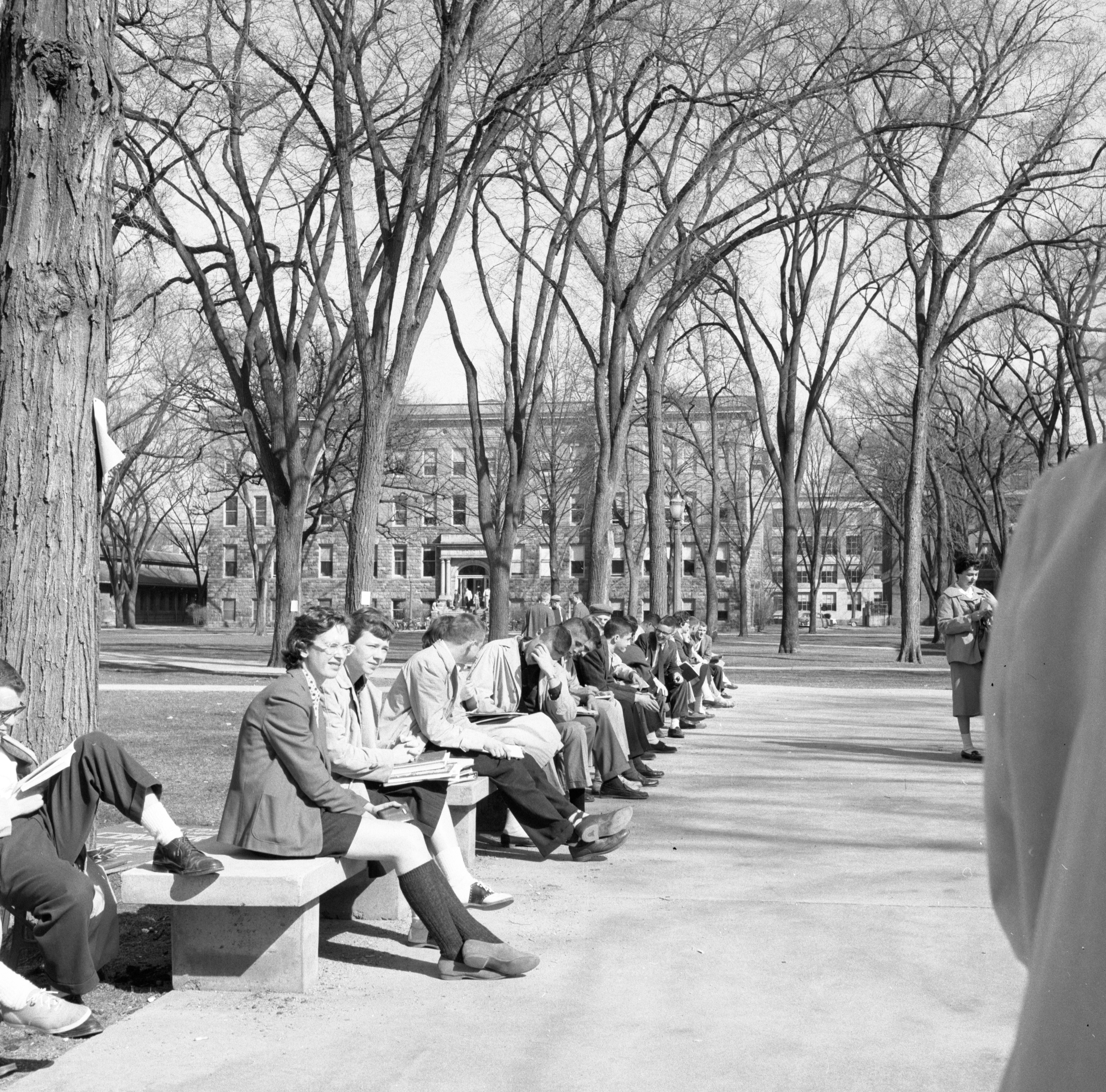 University of Michigan Students On The Diag, March 1957 image