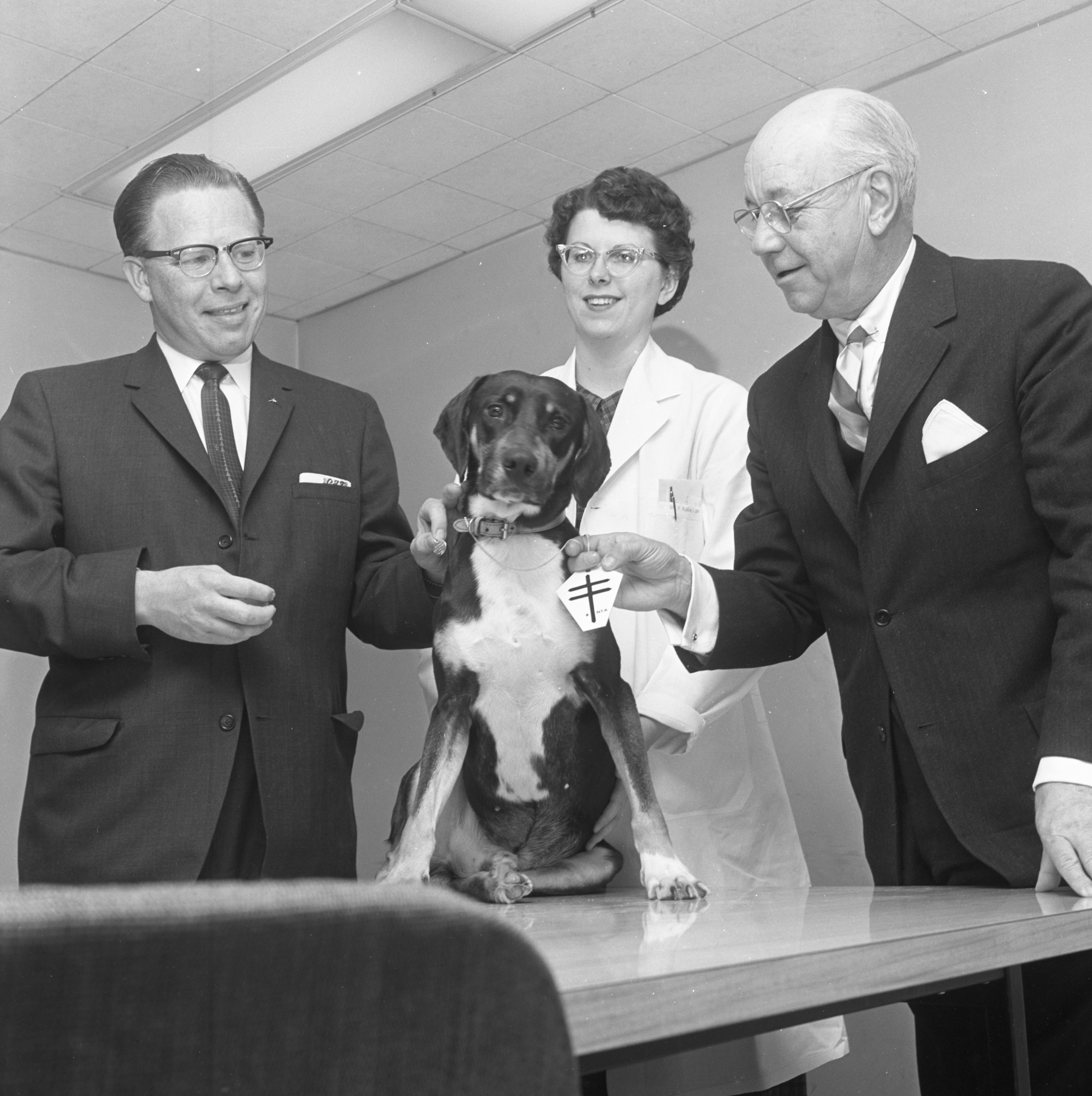 Image from Homer, Hound Dog & Lung Transplant Recipient, Receives Two Medals For His Contribution To Science, April 1962
