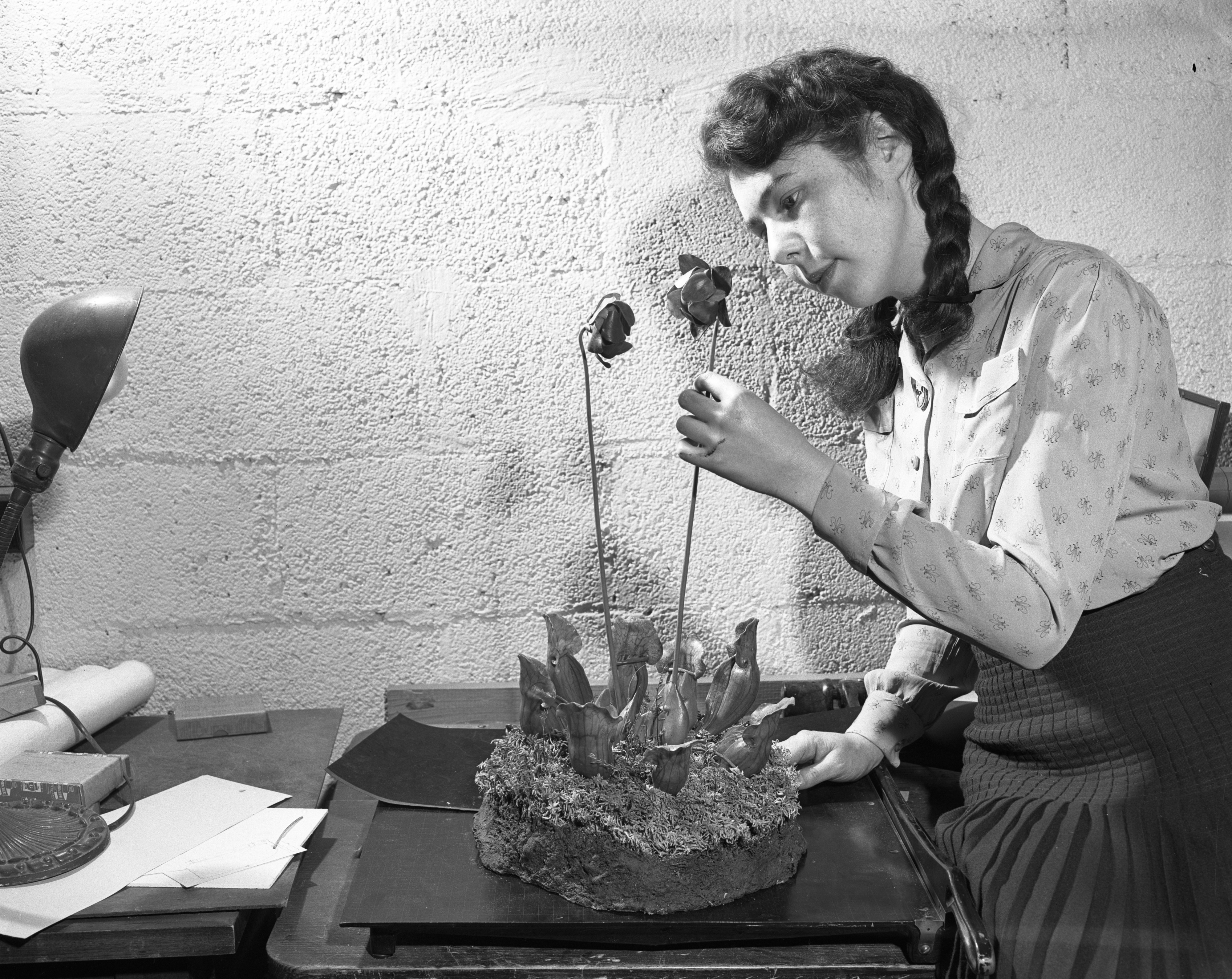 Olga Kazarinoff & Wax Flowers at the University of Michigan Museum, June 1948 image
