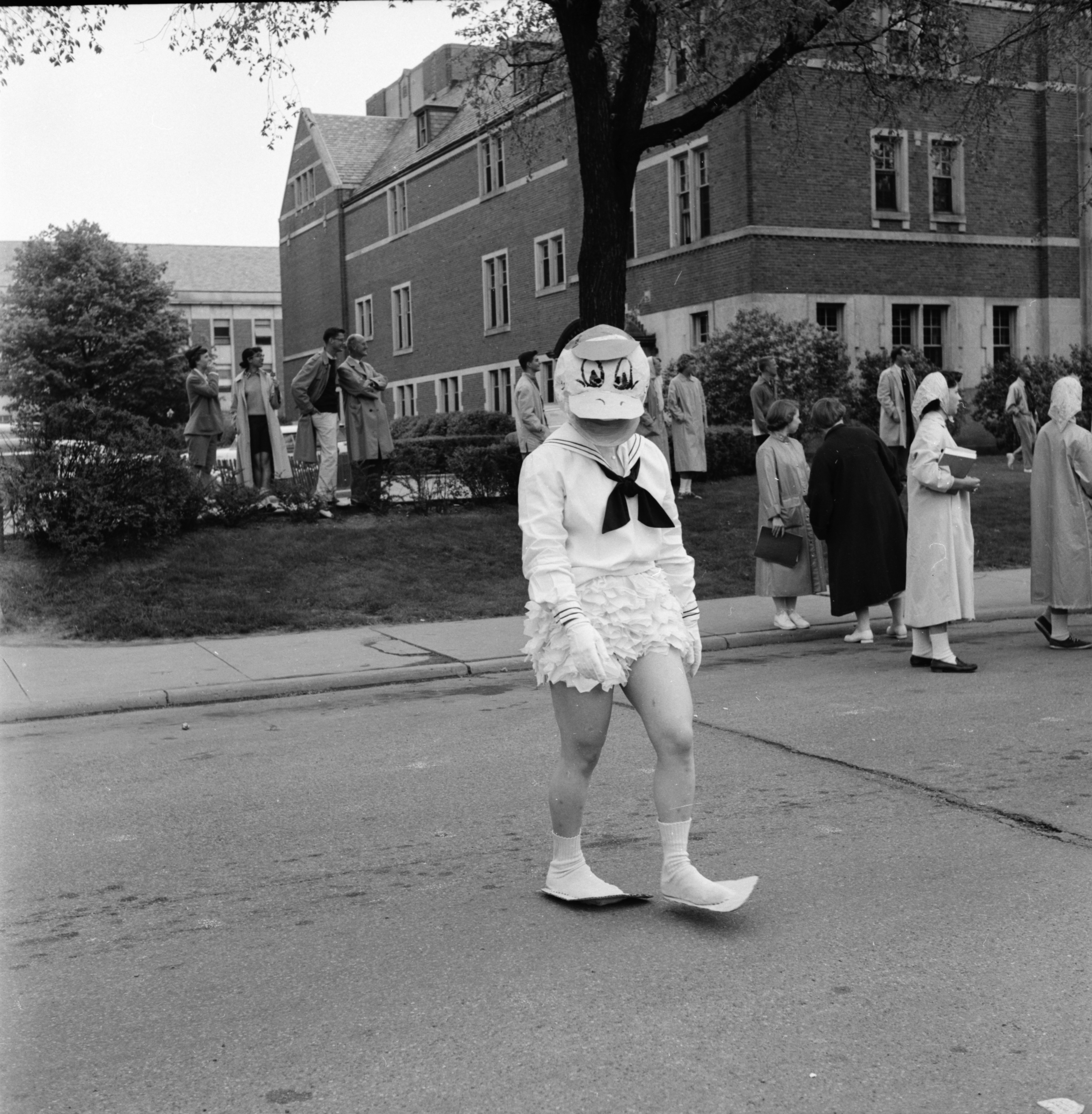 "Donald Duck makes an appearance in the University of Michigan ""Spring Weekend"" parade, May 1957 image"