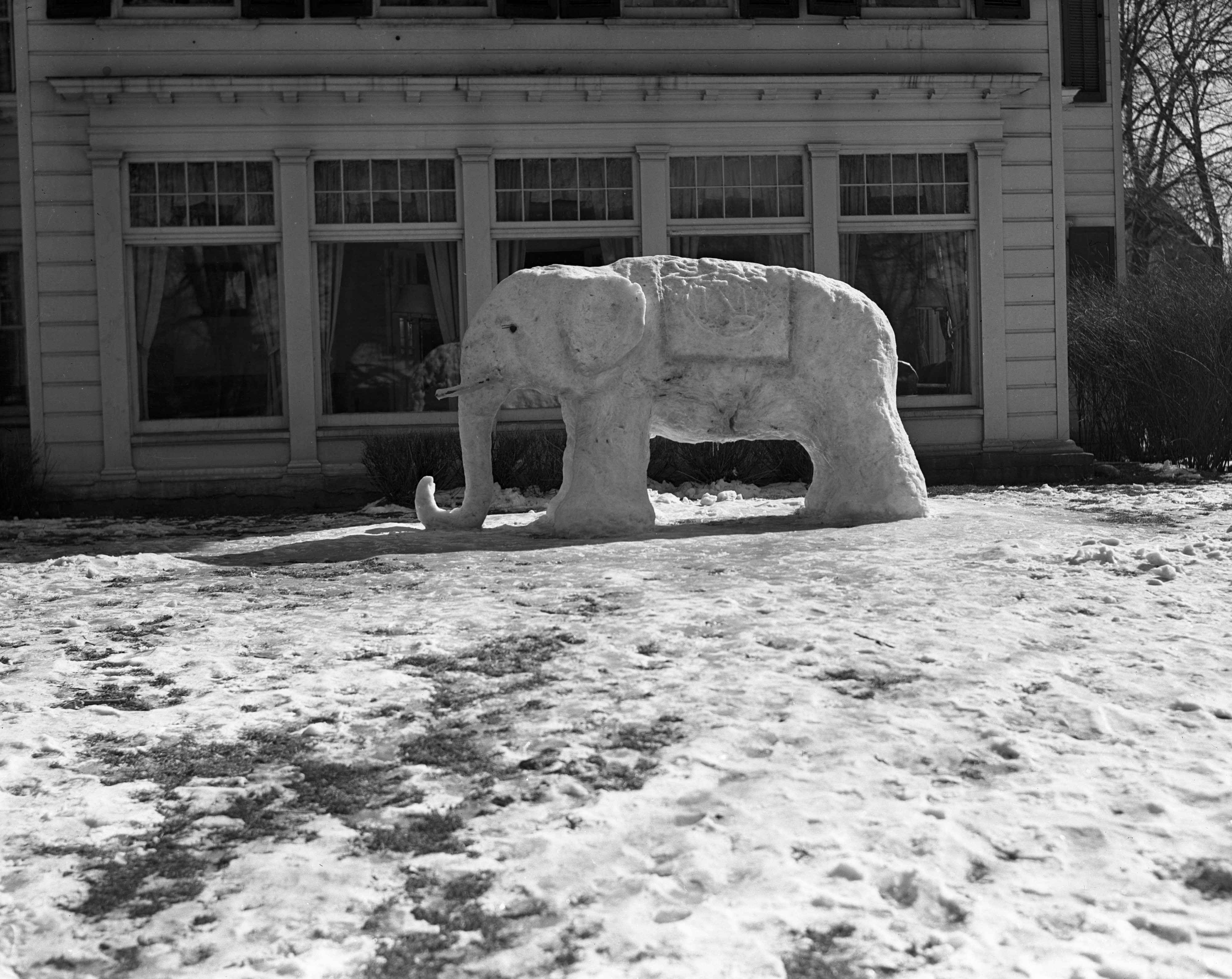Snow Elephant Outside Phi Sigma Kappa, March 1938 image