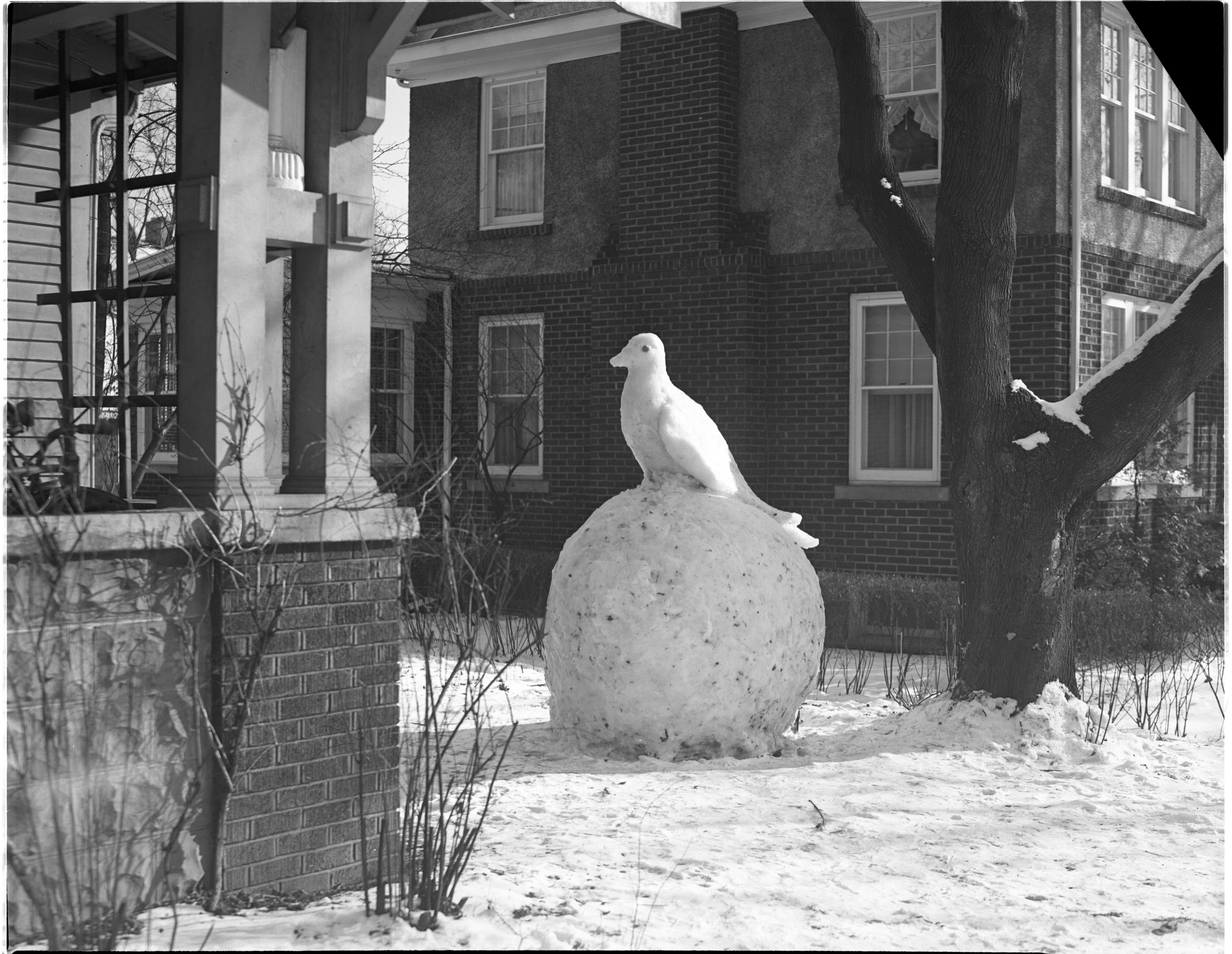Dove Of Peace Sculpted In Snow By Avard Fairbanks, January 1946 image
