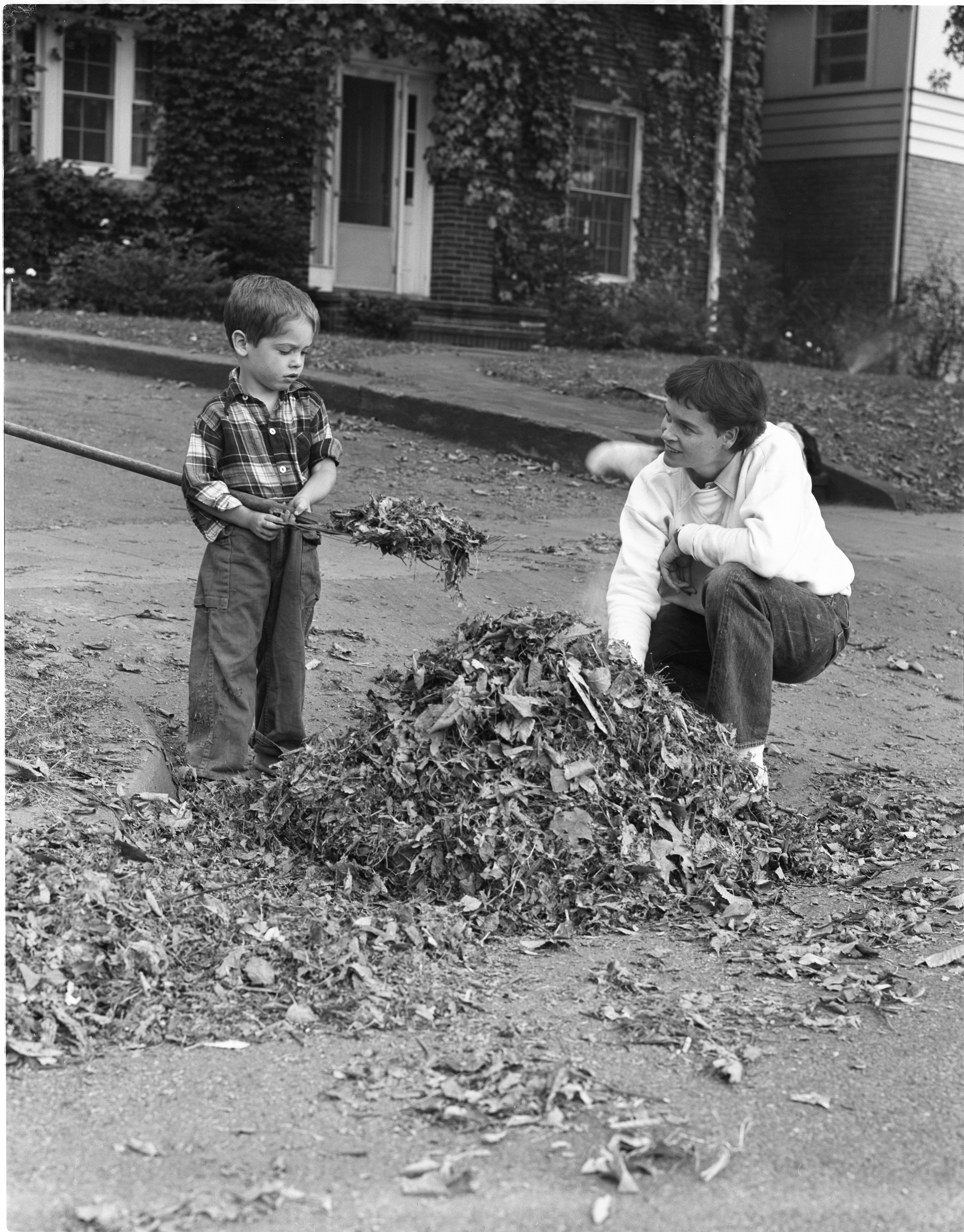 Anne and Benny Ladd Rake Leaves, September 1955 image