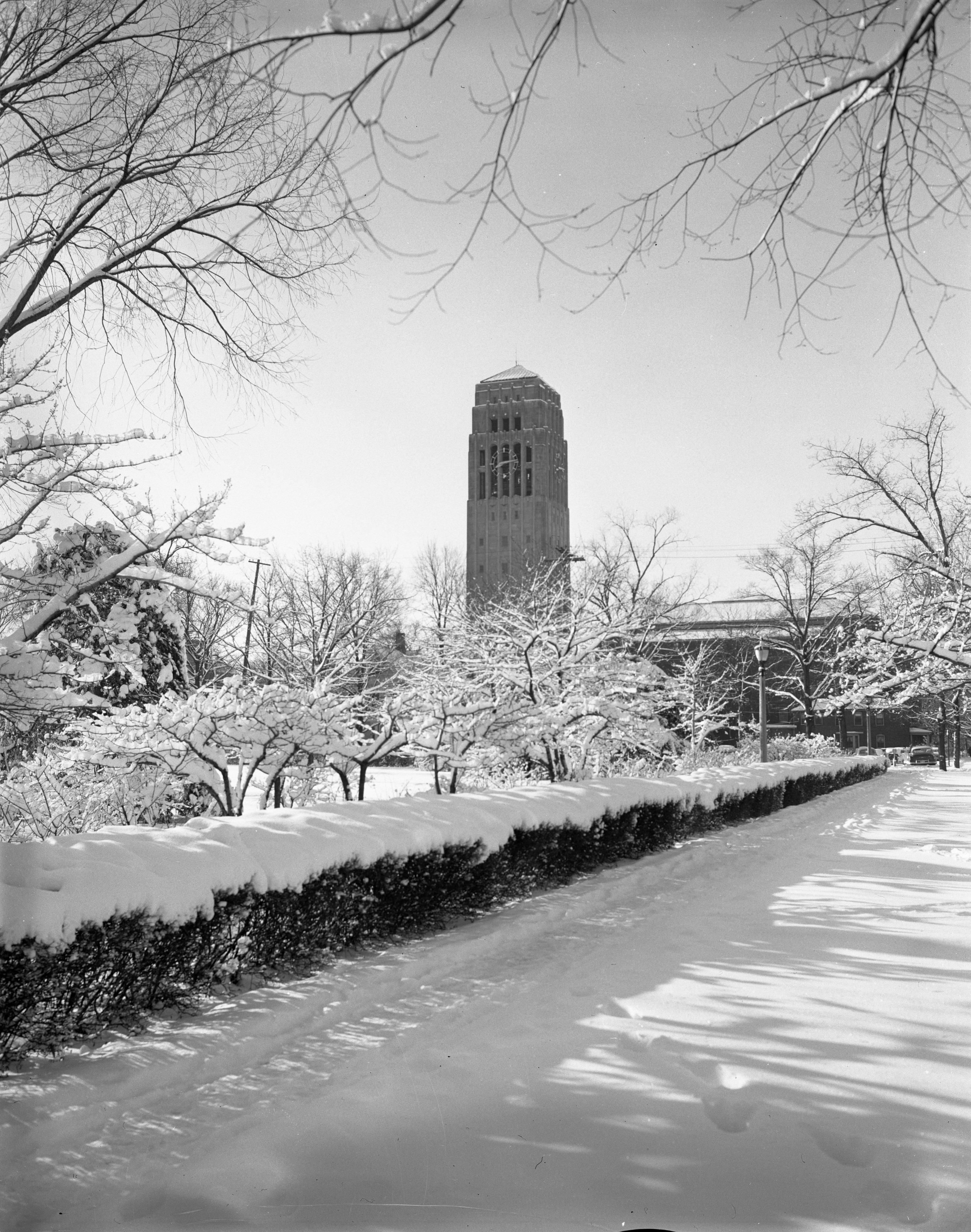 Burton Memorial Tower Overlooks A Snowy Campus, March 1956 image