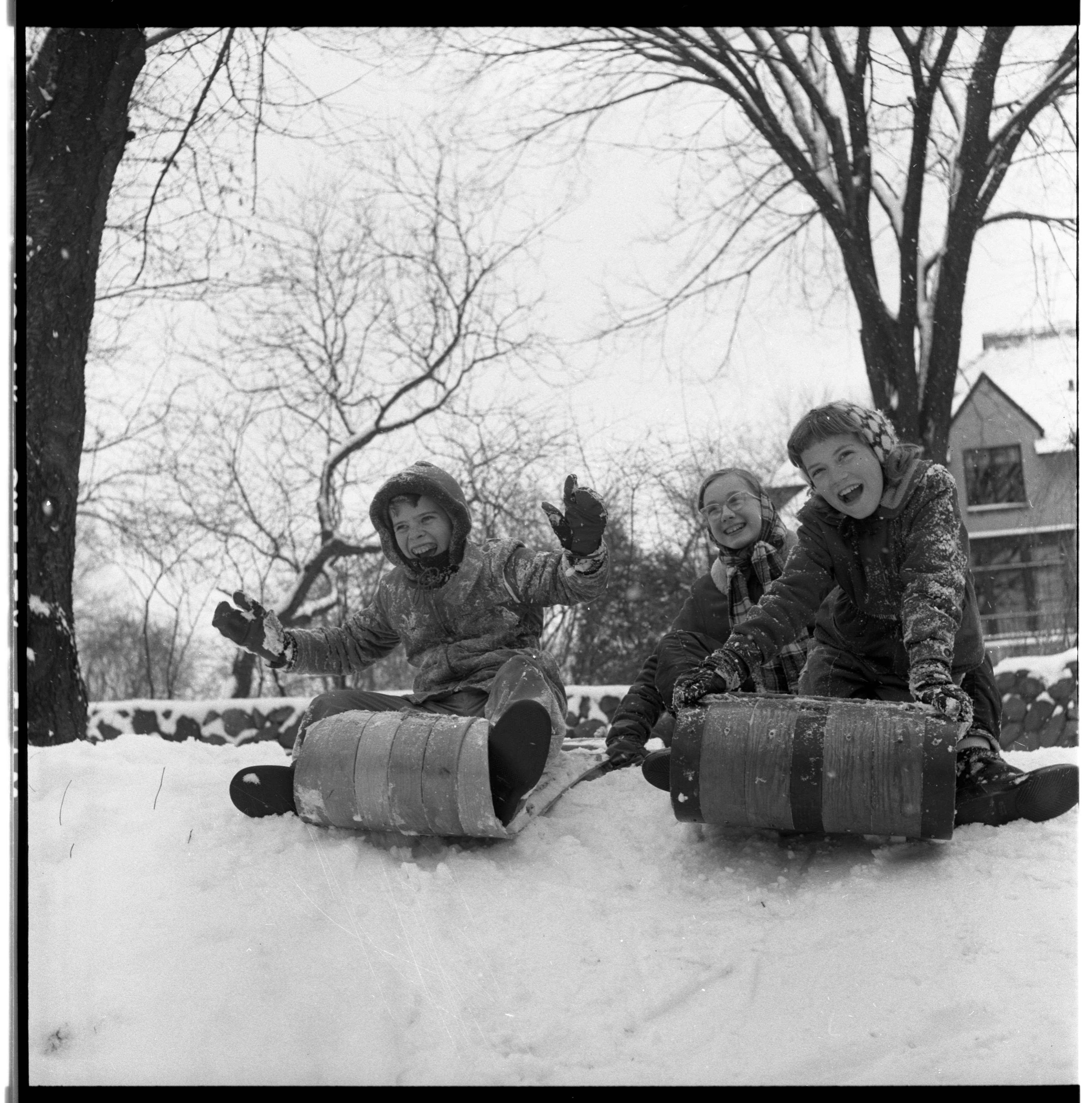 Sledding in Nichols Arboretum, January 1957 image